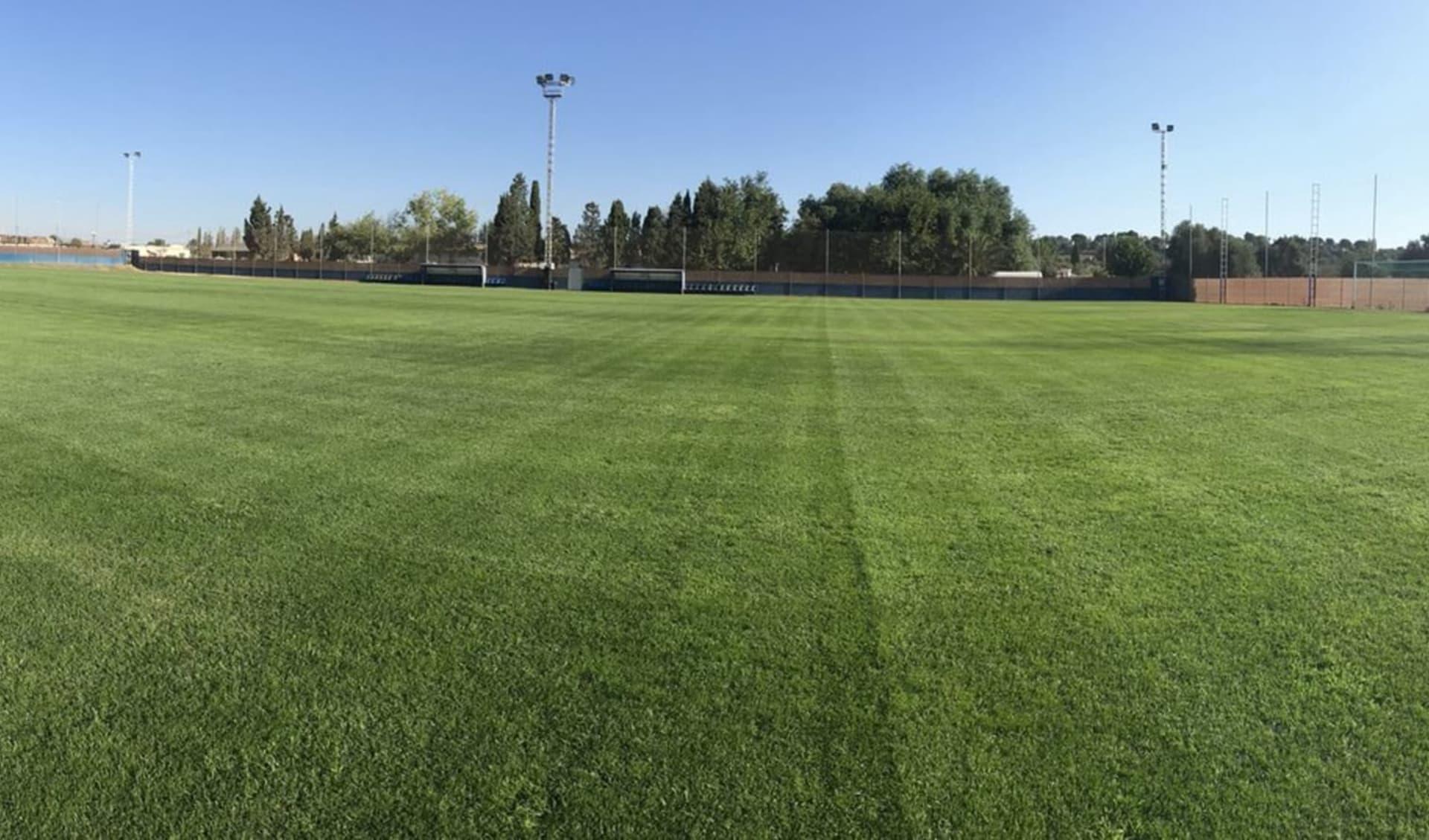 Valencia - Mas Camarena: FOOTBALL PITCH CF CRACKS 1