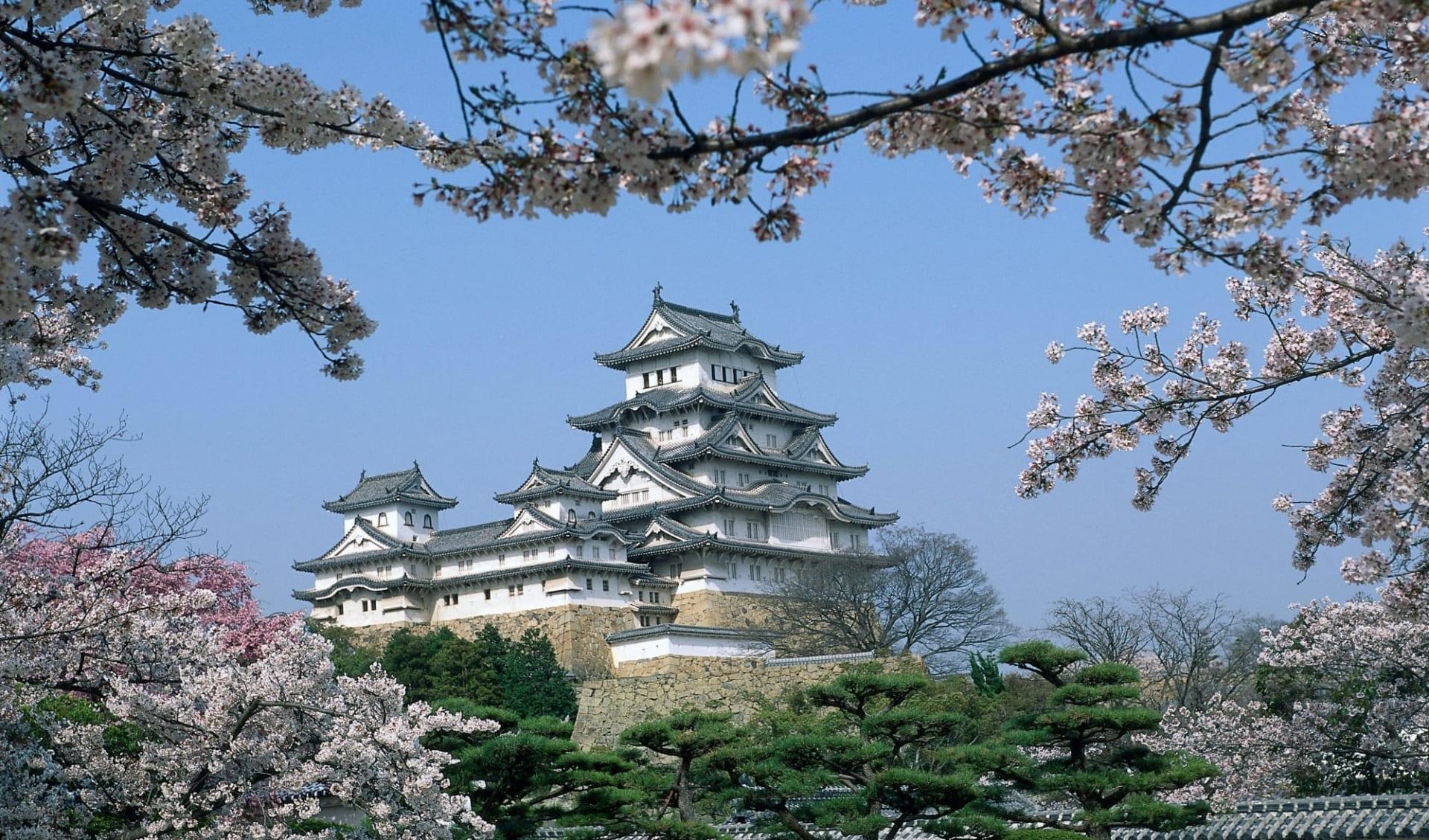 Gruppenreise «Fuji» ab Kyoto: Himeji: Castle