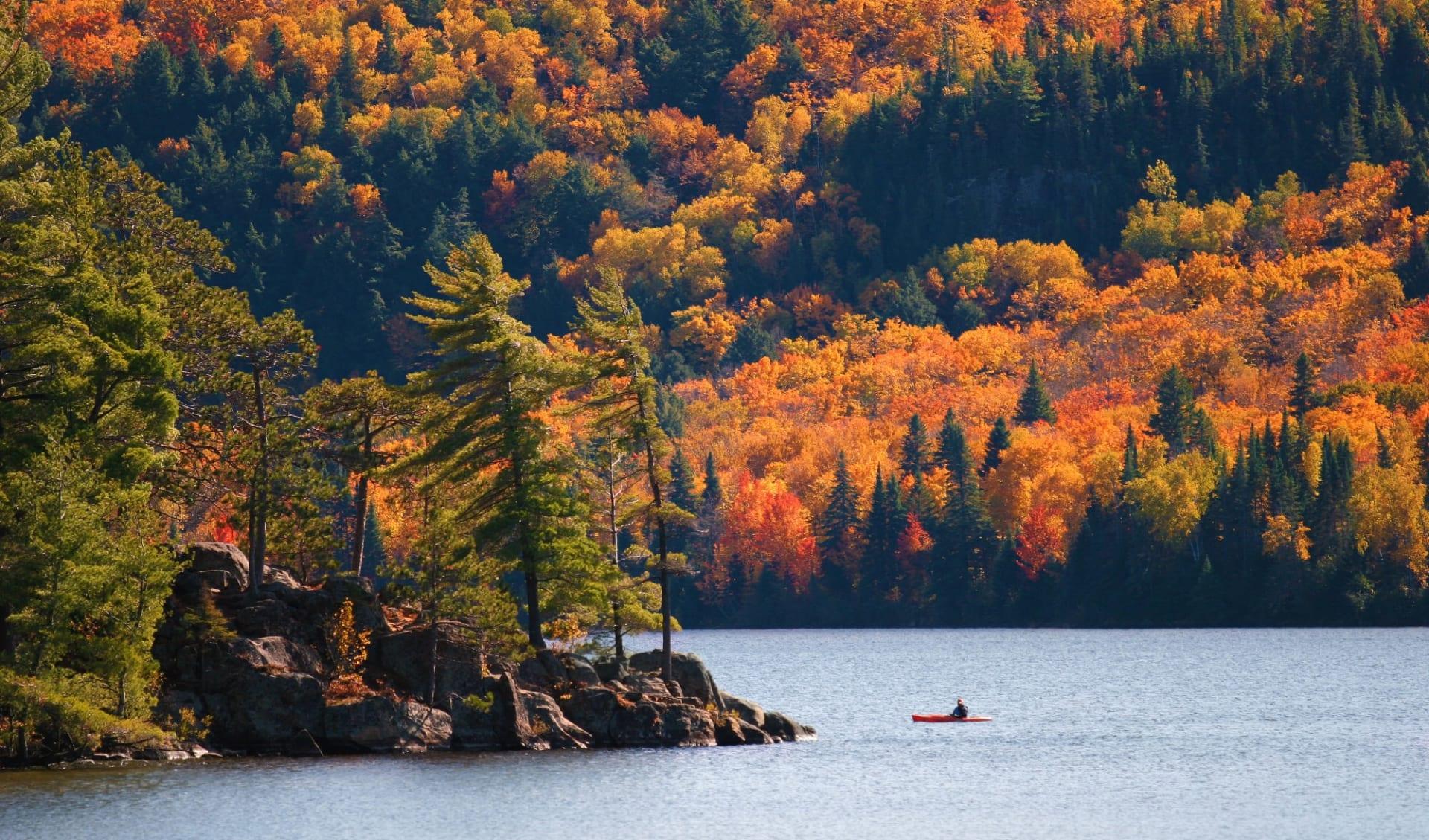 Ostkanada Highlights 9 Tage ab Toronto: Algonquin Provincial Park