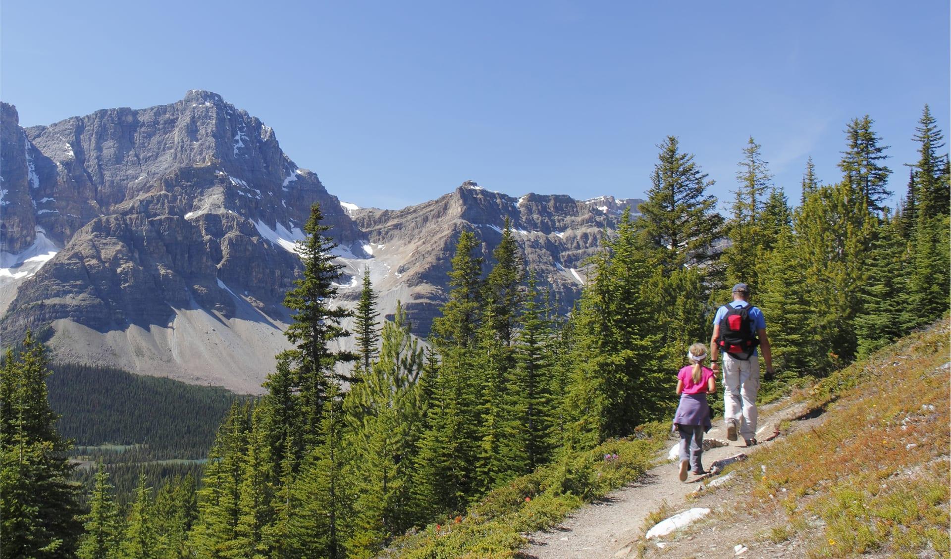 Alpine Trail in Jasper National Park