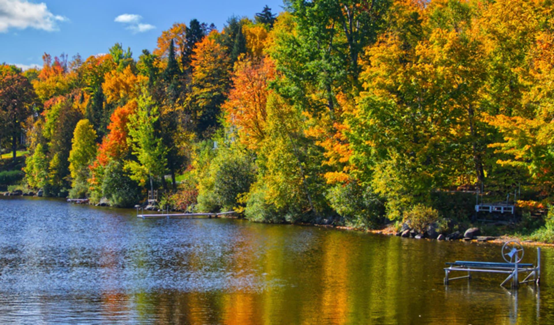 Nice Day in Fall