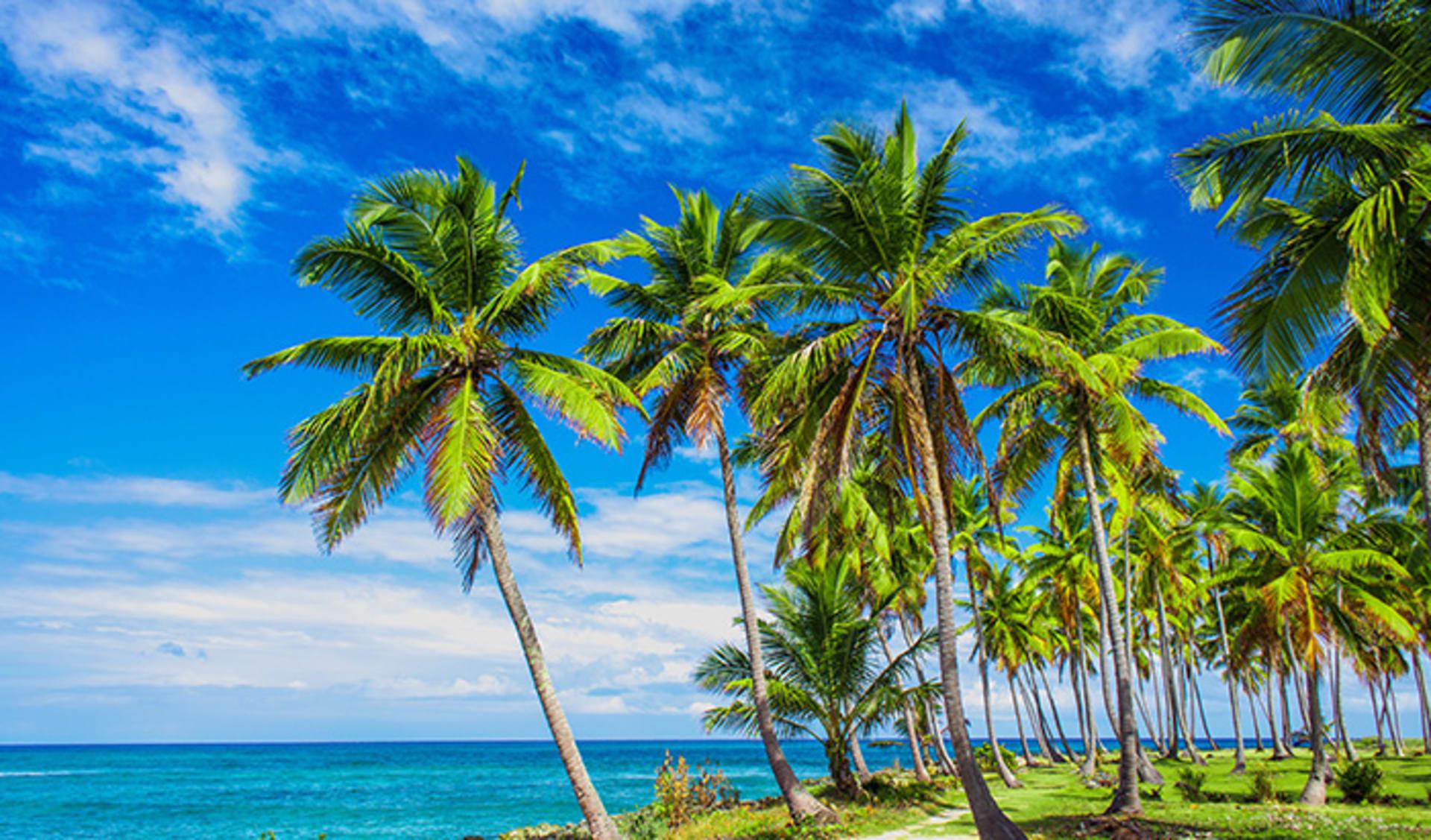 Samana, Karibik
