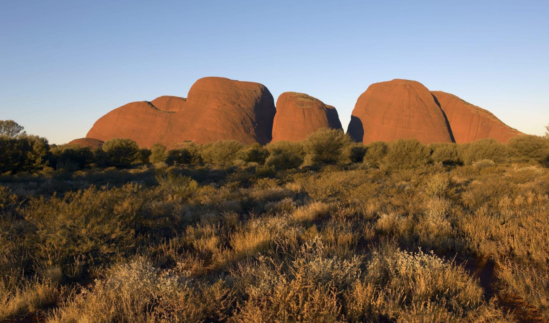 Uluru & Kata Tjuta Cultural Adventure (AAT Kings) ab Red Centre: Kata Tjuta - Olgas