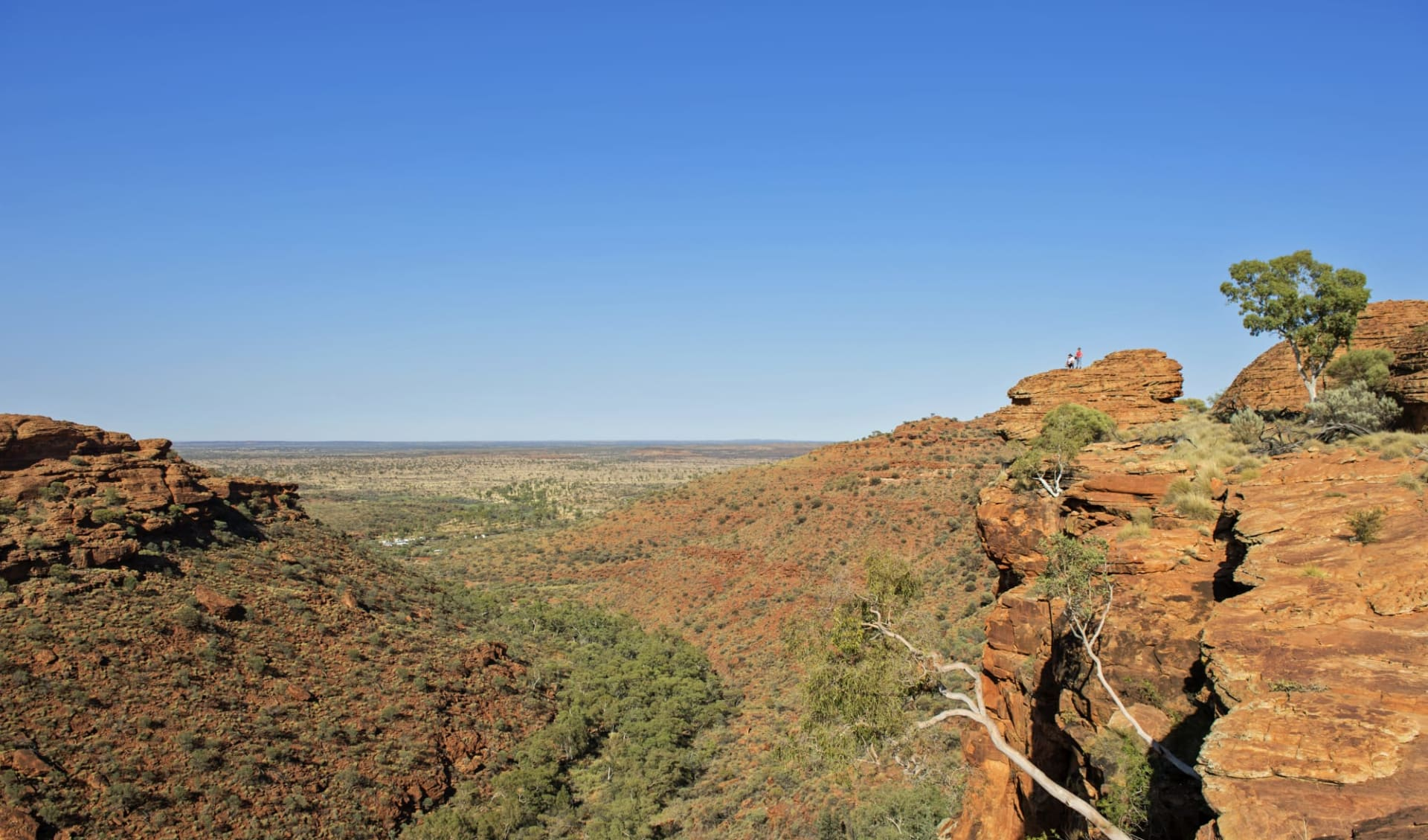 4x4 Red Centre Wallaby Dreaming Safari ab Alice Springs: Kings Canyon - Blick auf Ebene