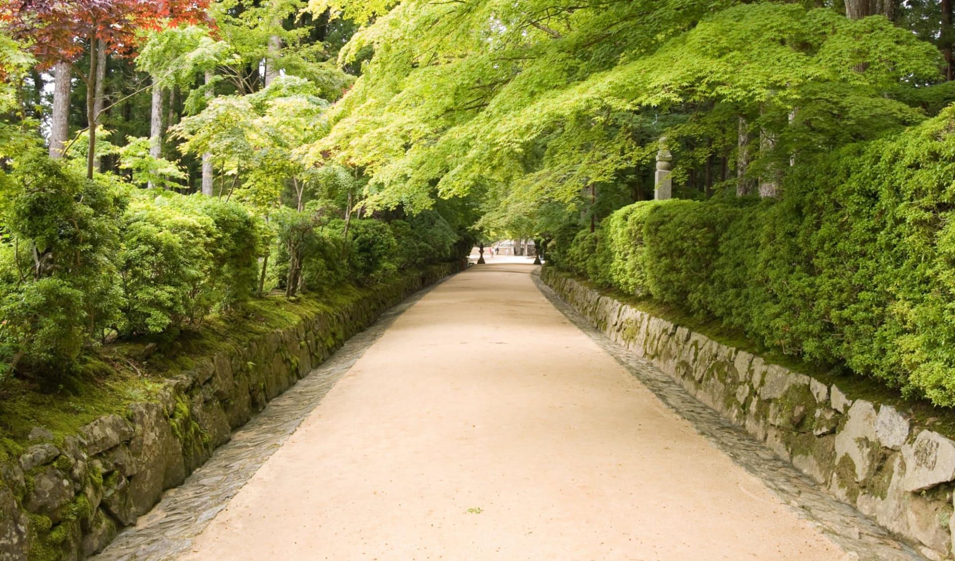 Weltkulturerbe Koya-San Klöster ab Kyoto: Koya mountain