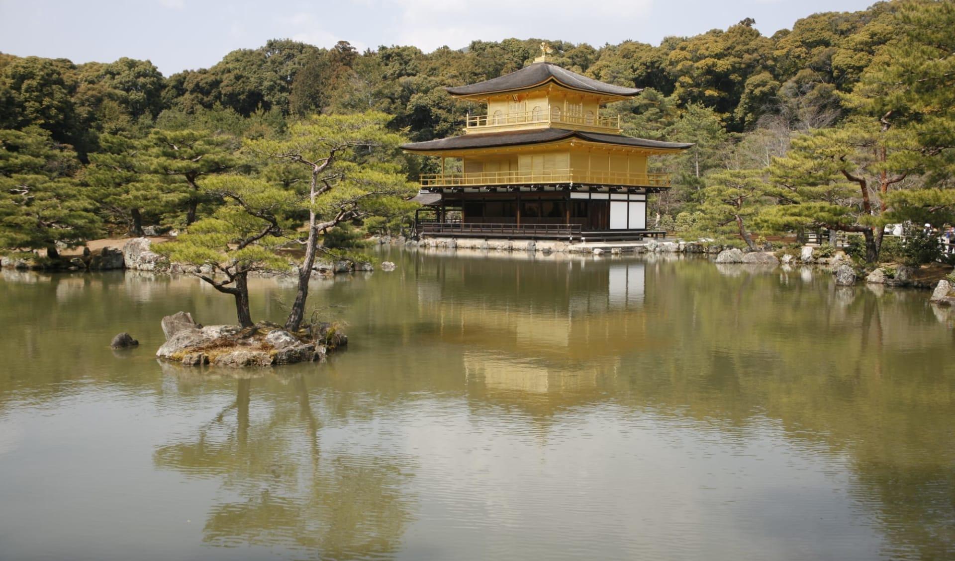 The Golden Route ab Tokio: Kyoto Golden Pavilion Kinkakuji