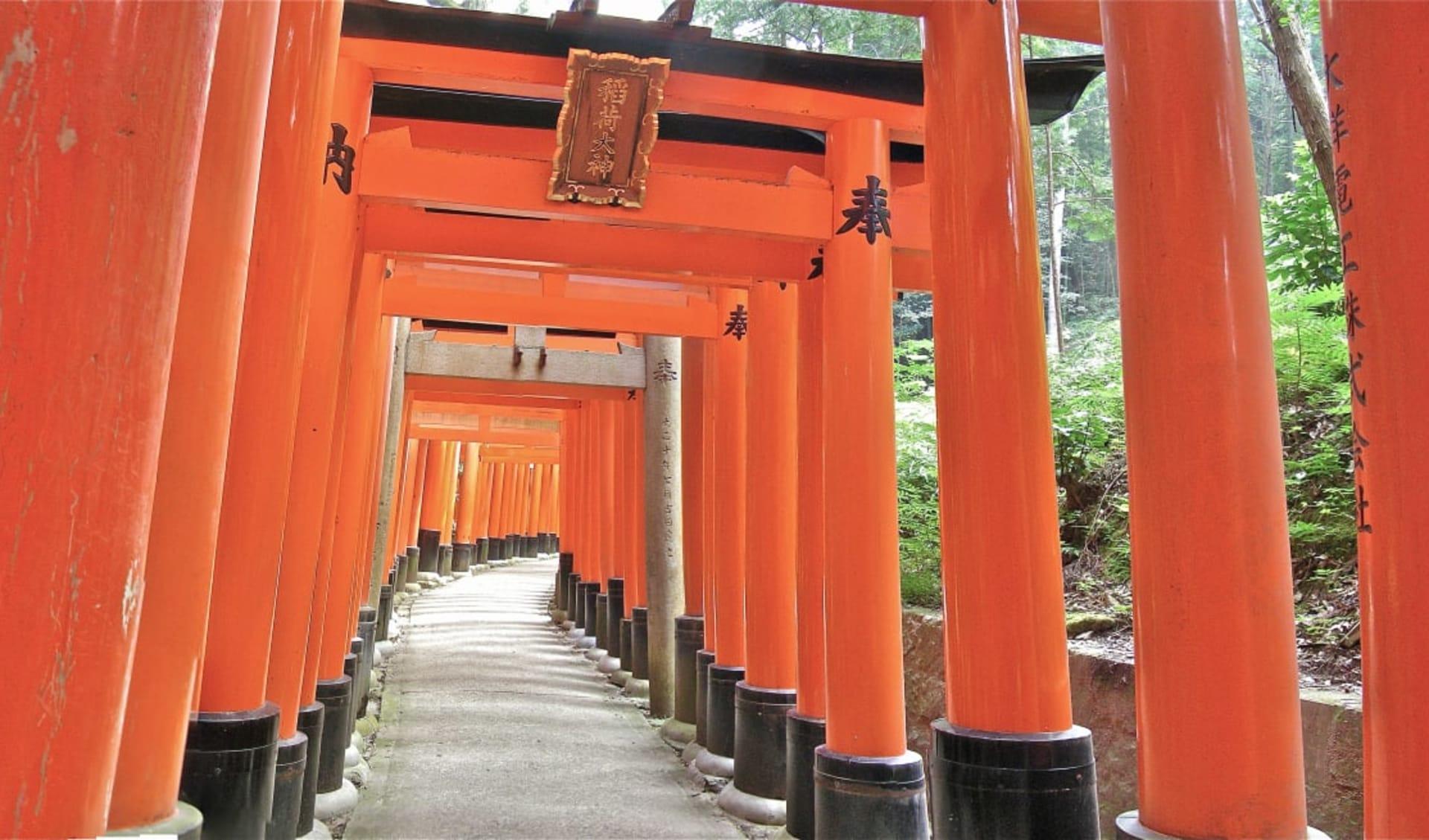 Das Land der aufgehenden Sonne ab Tokio: Kyoto Torii Gates