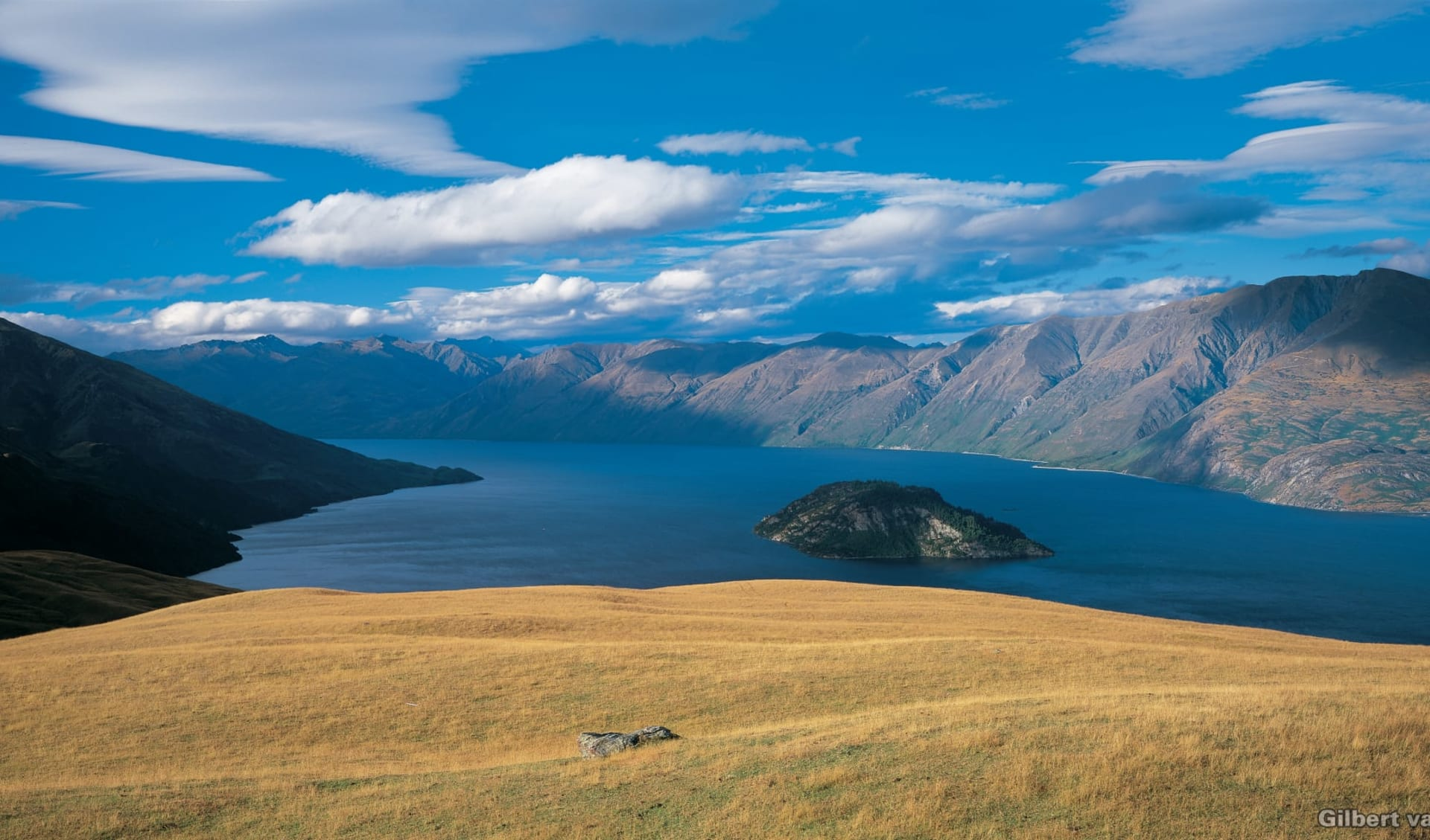 New Zealand South Island Discovery ab Queenstown: Lake Wanaka - Wiese und Insel_L109_MASTER