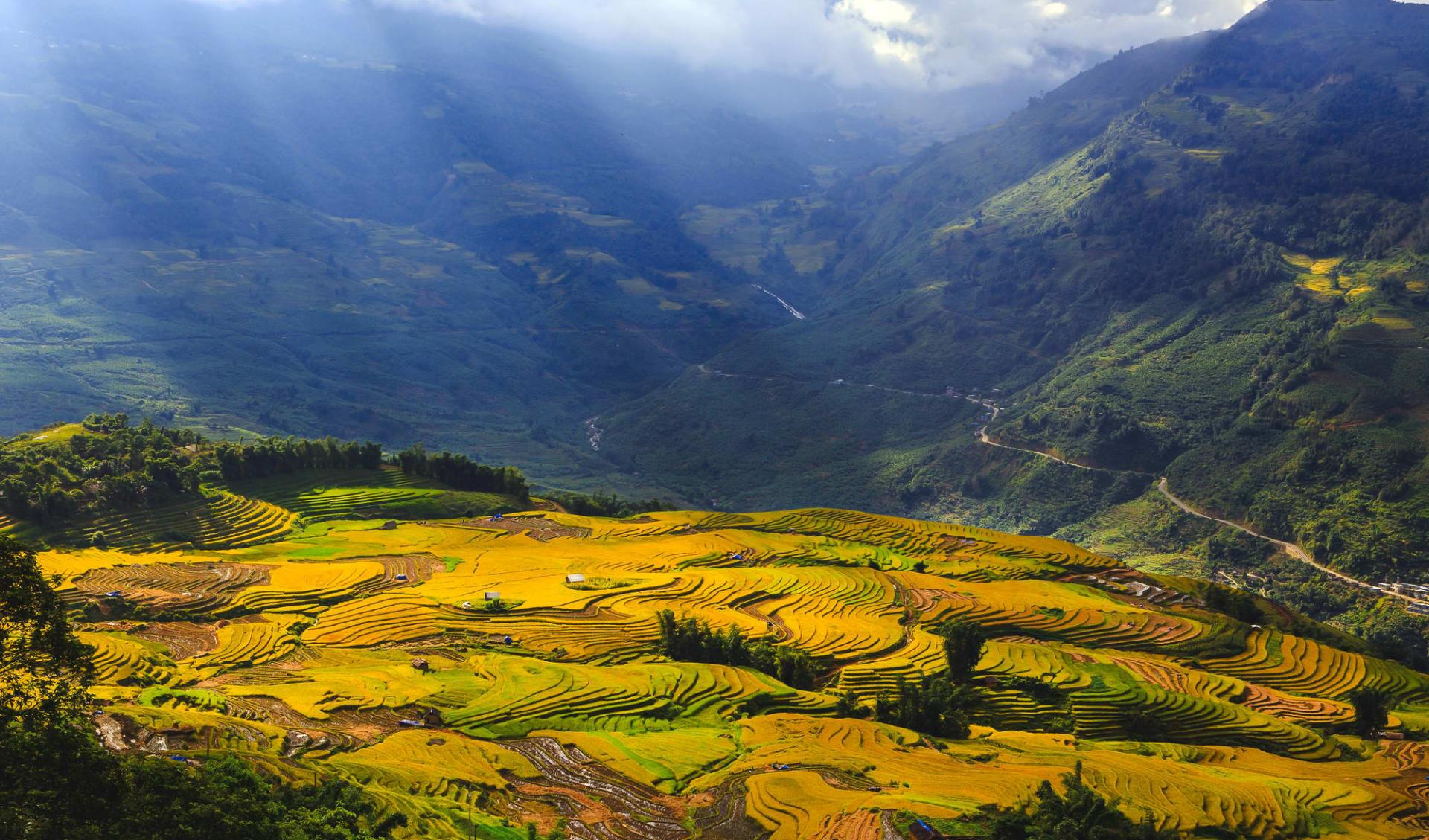 Natur & Kultur rund um Sapa ab Hanoi: Lao Cai: terraced rice fields and rays