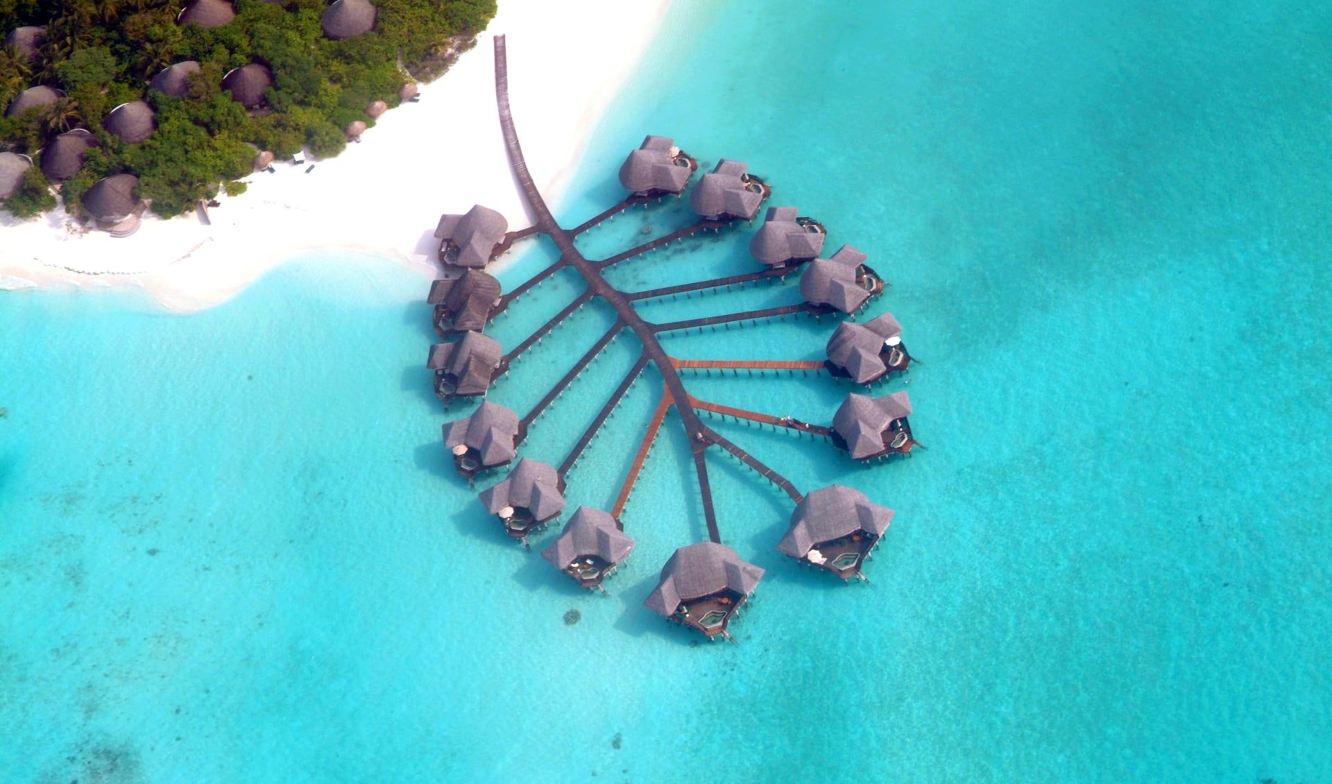 Coco Palm Dhuni Kolhu in Baa-Atoll: