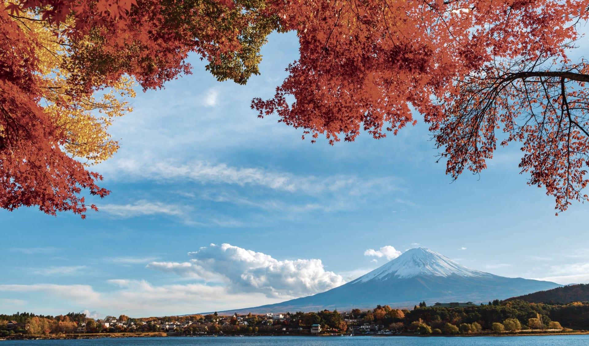 The Golden Route ab Tokio: Mount Fuji