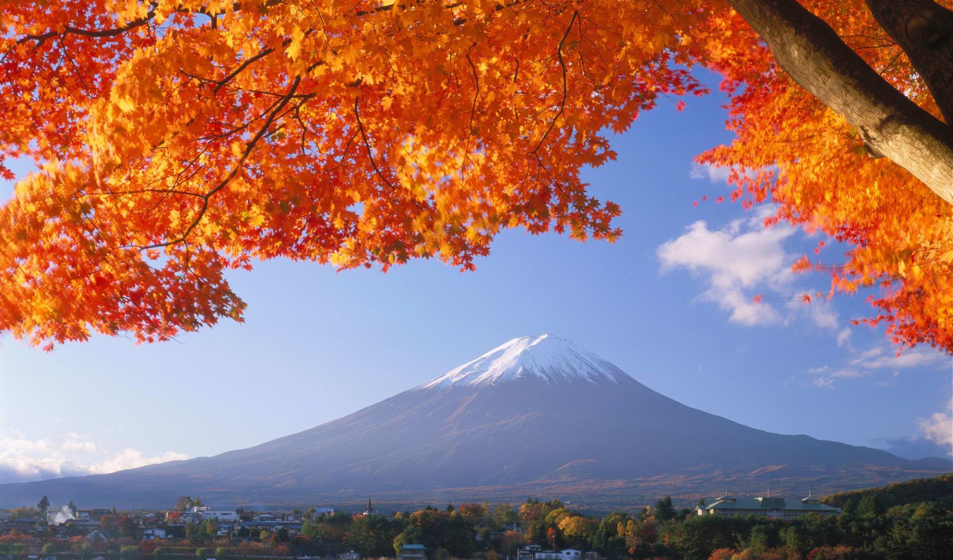 Mt. Fuji Trekking (Hauptsaison) ab Tokio: Mt. Fuji: autumn colours