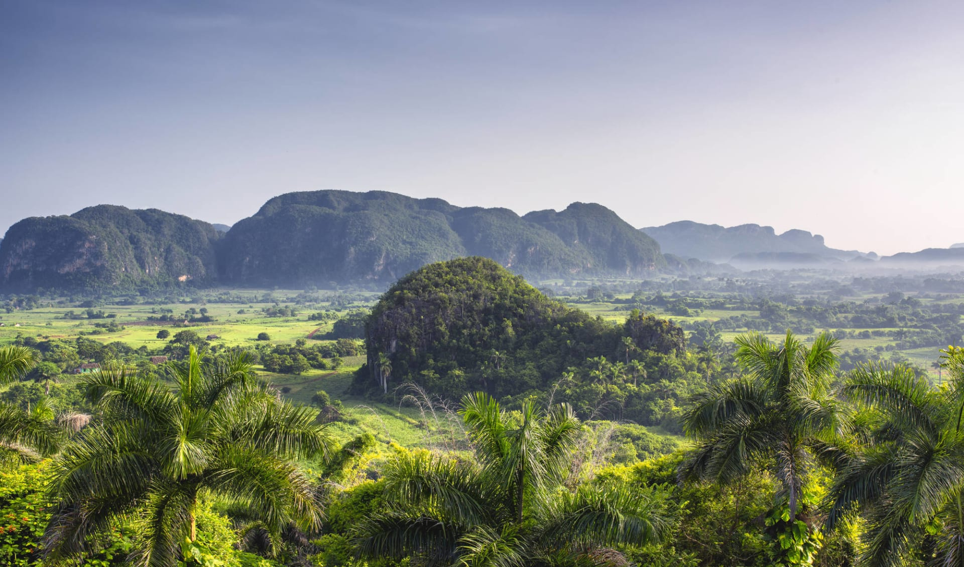 La Vida Cubana ab Havanna: Natur Ausflug Vinalestal - Vinalestal Landschaft - c