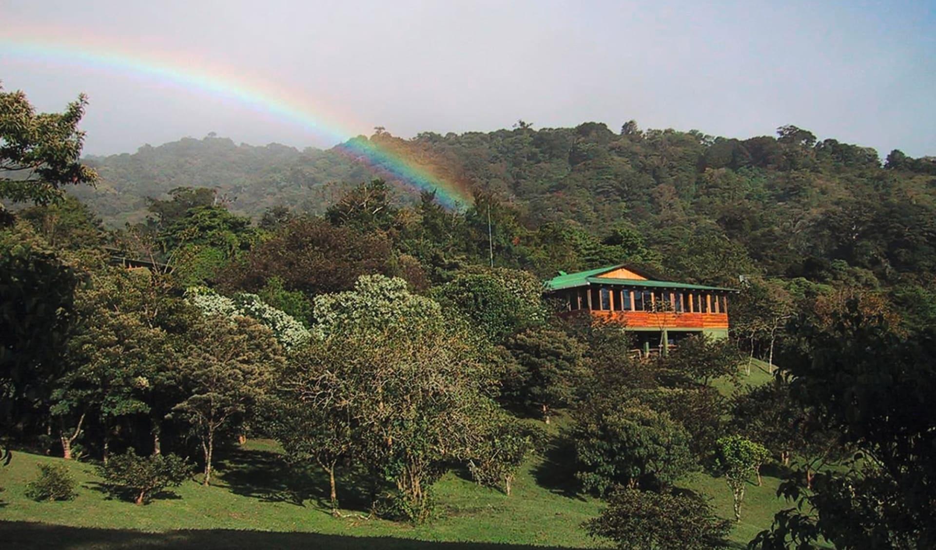 Mietwagenreise Costa Rica für die Familie ab San José City: natur cloud forest lodge wald regenbogen
