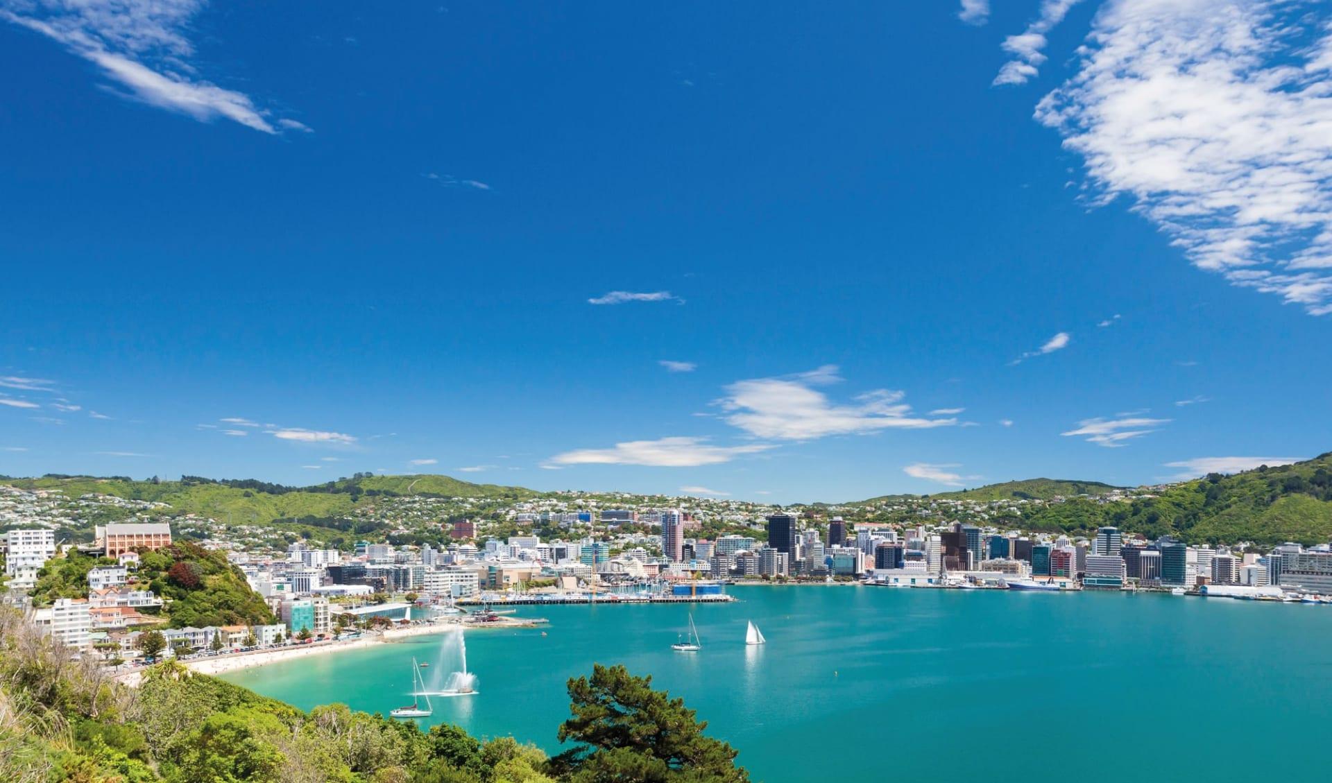 Neuseeland entdecken (AAT Kings) ab Christchurch: Neuseeland - Nordinsel - Blick vom Mount Victoria nach Wellington