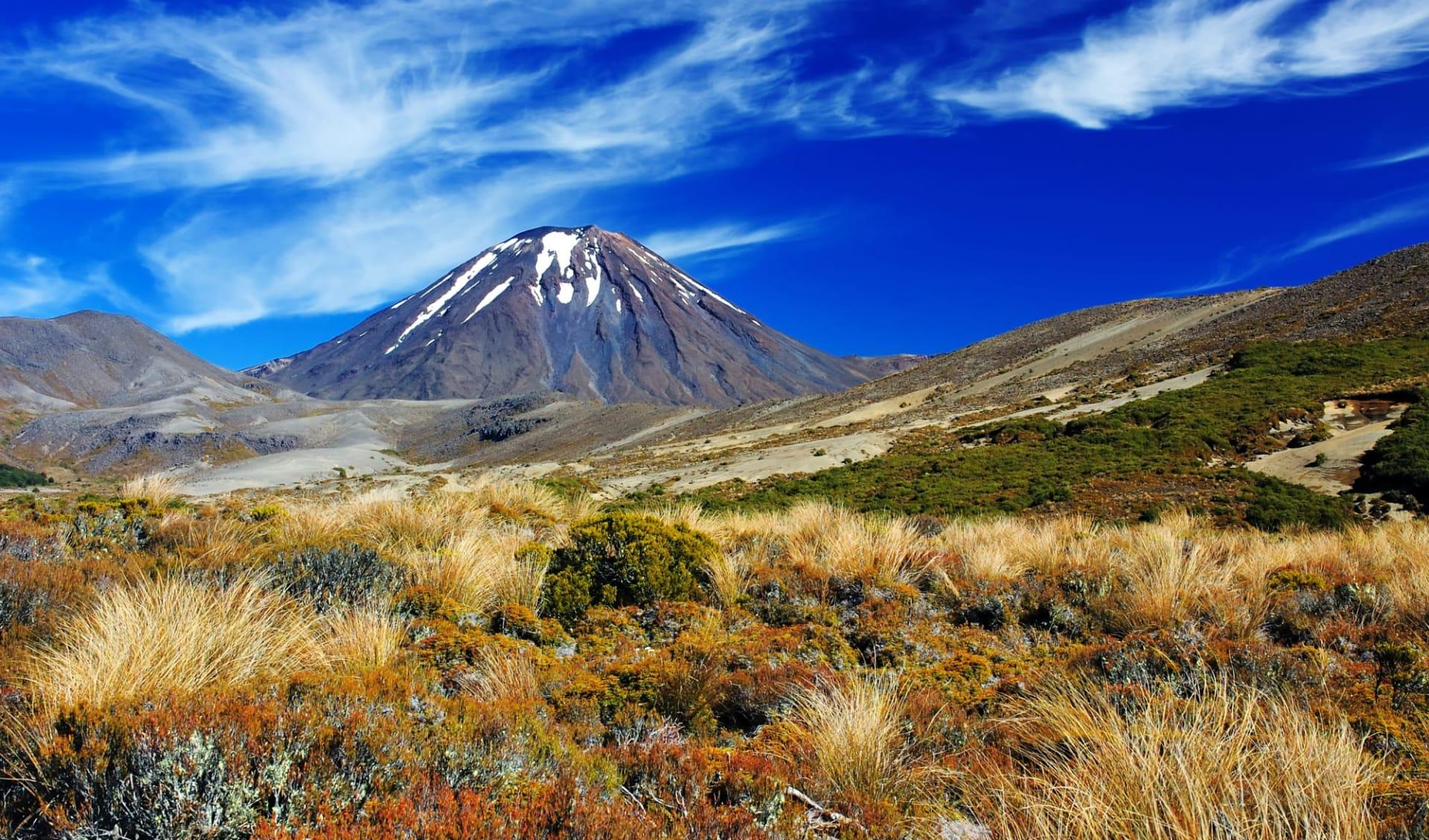 Kiwi Encounter ab Auckland: Neuseeland - Tongariro (3)
