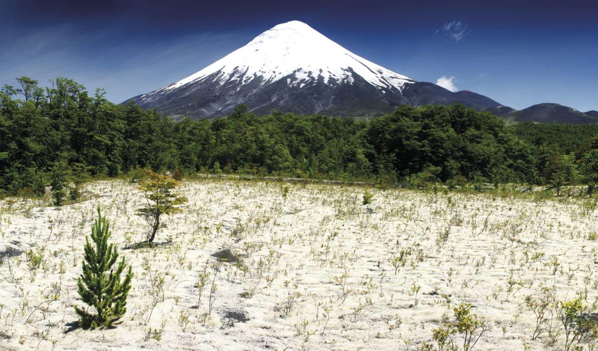 Der kleine Norden ab La Serena: Osorno Vulkan