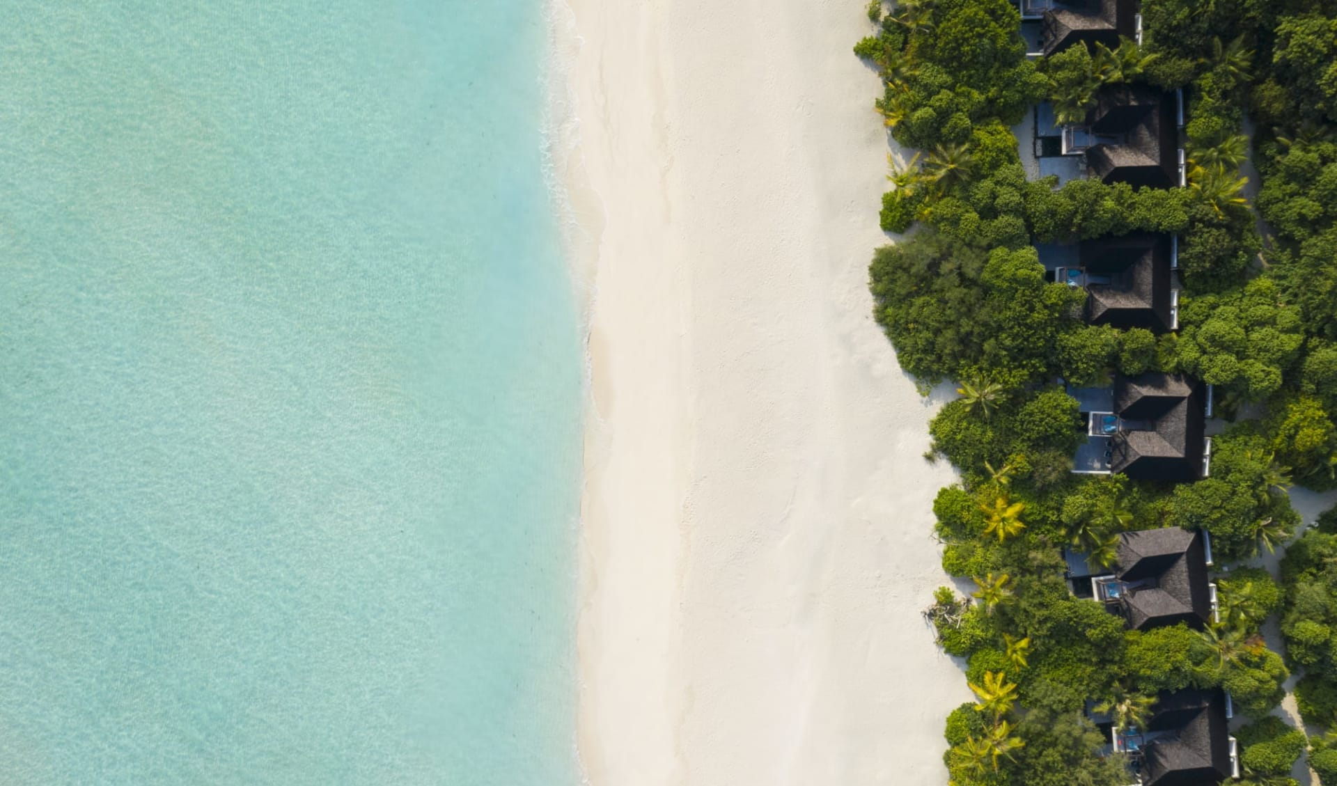 Mövenpick Resort Kuredhivaru Maldives in Noonu-Atoll: Beach Pool Suite