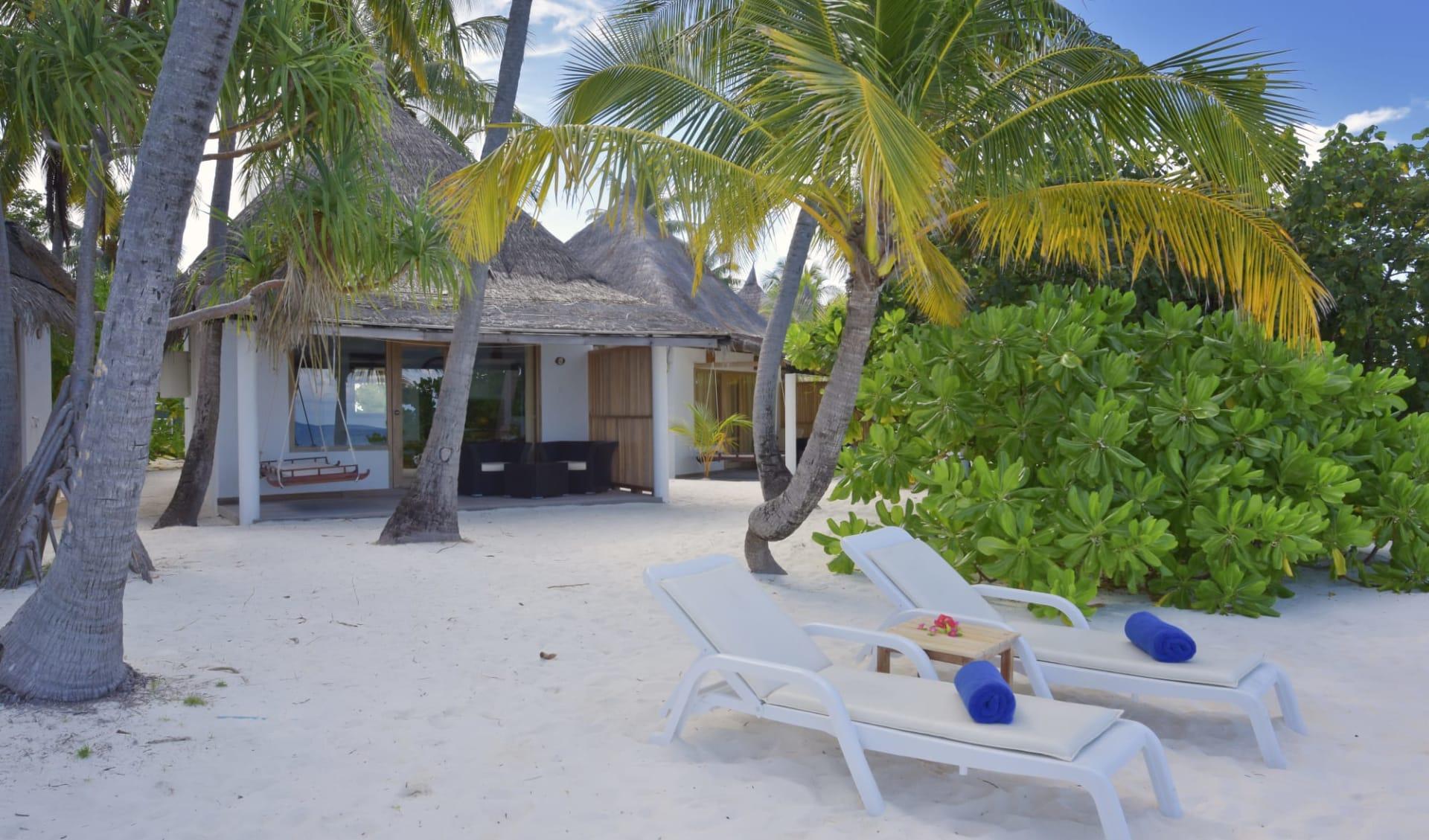 Angaga in Ari-Atoll:  Superior Beach Bungalow