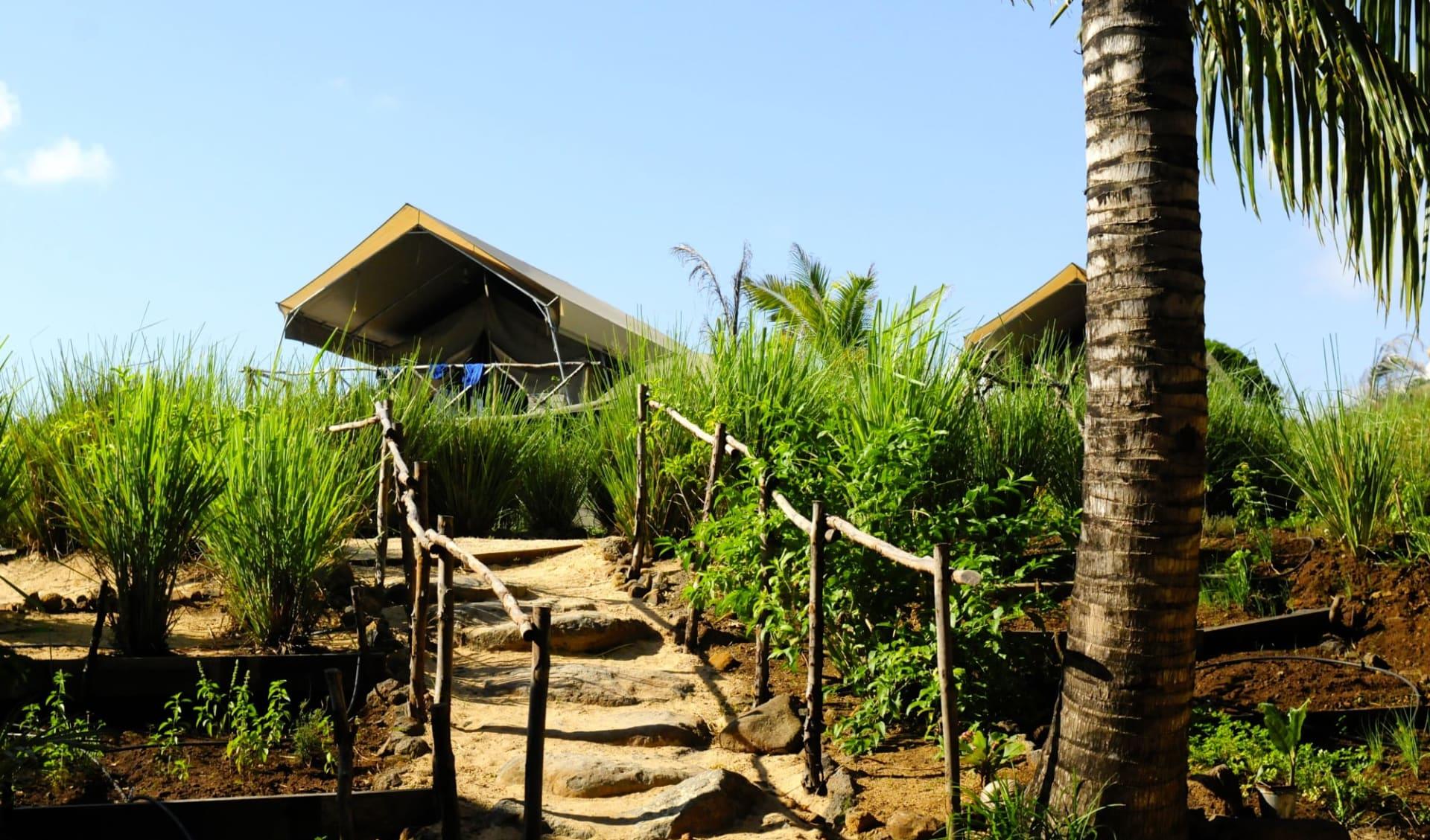 Otentic Eco Tent River Experience in Grande Rivière Sud Est: Tent