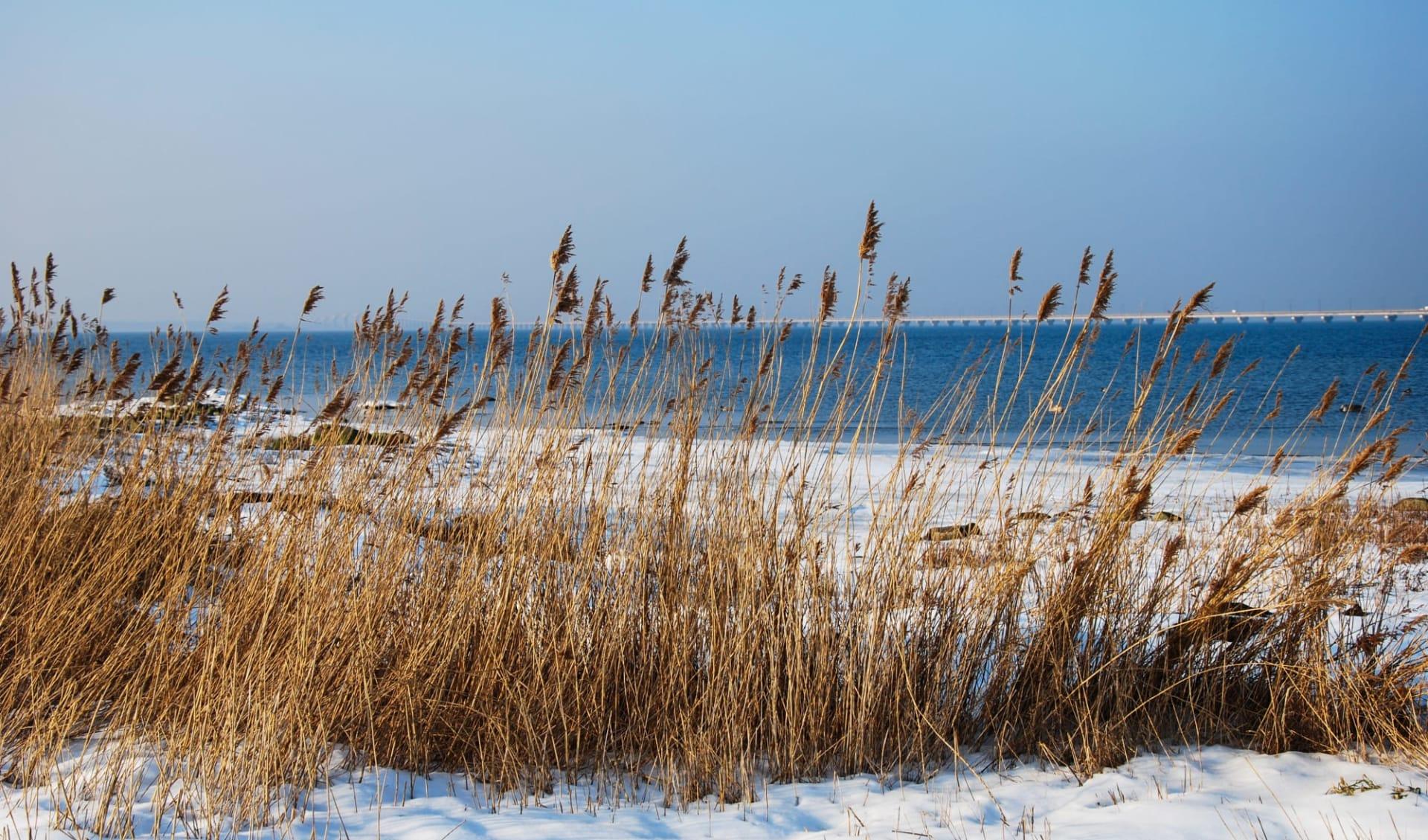 Hotel Skansen in Öland: Schweden Baltic Sea Winter