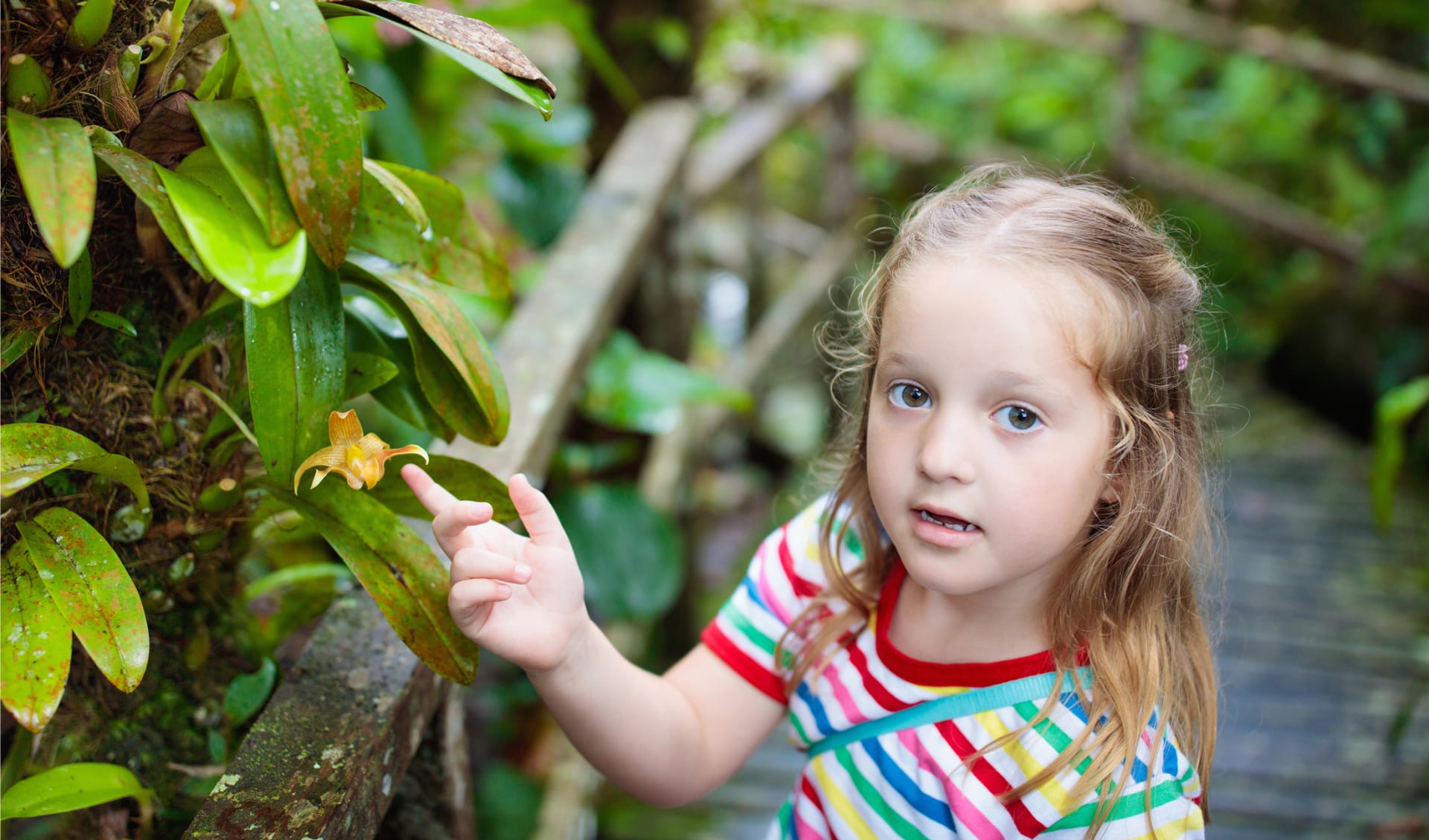 Kid walking in exotic forest with flowers, Seychelles