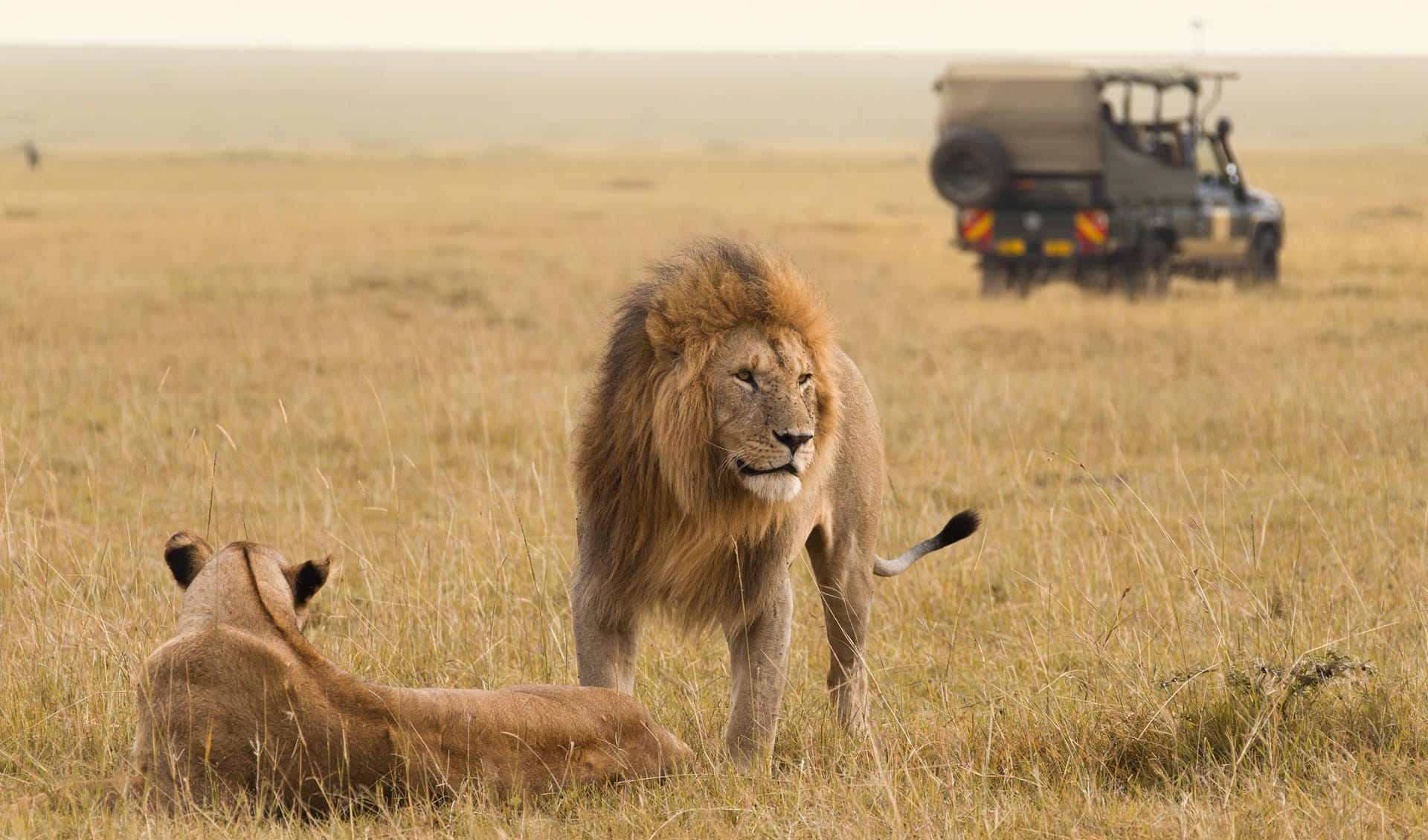Jeep Safari, Kenia
