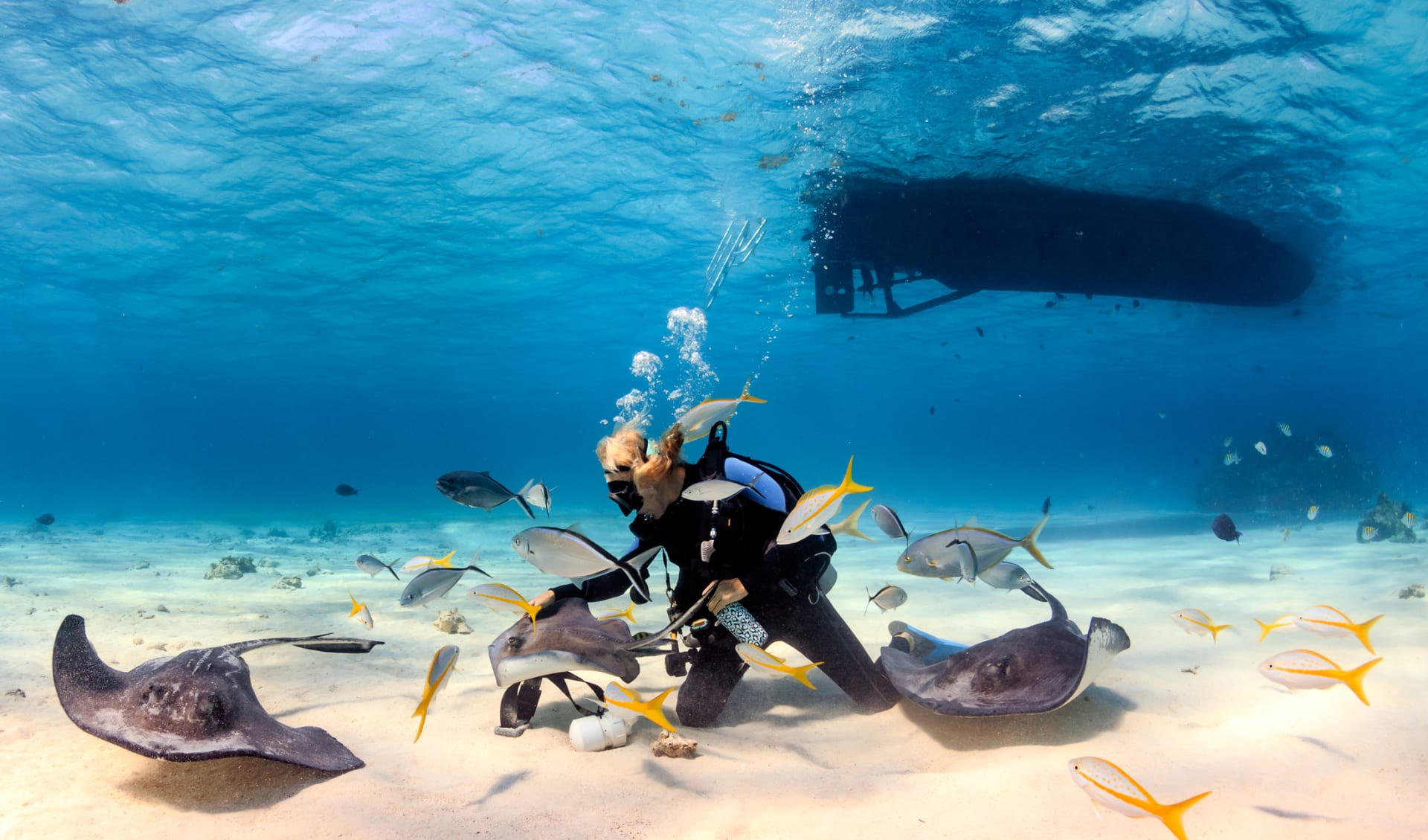 SCUBA-Taucher auf den Seychellen, der mit Stingrochen in flachem Wasser spielt