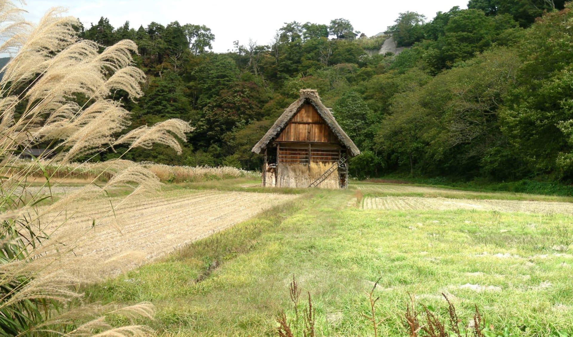 Gruppenreise «Glanzlichter Japans» ab Tokio: Shirakawago