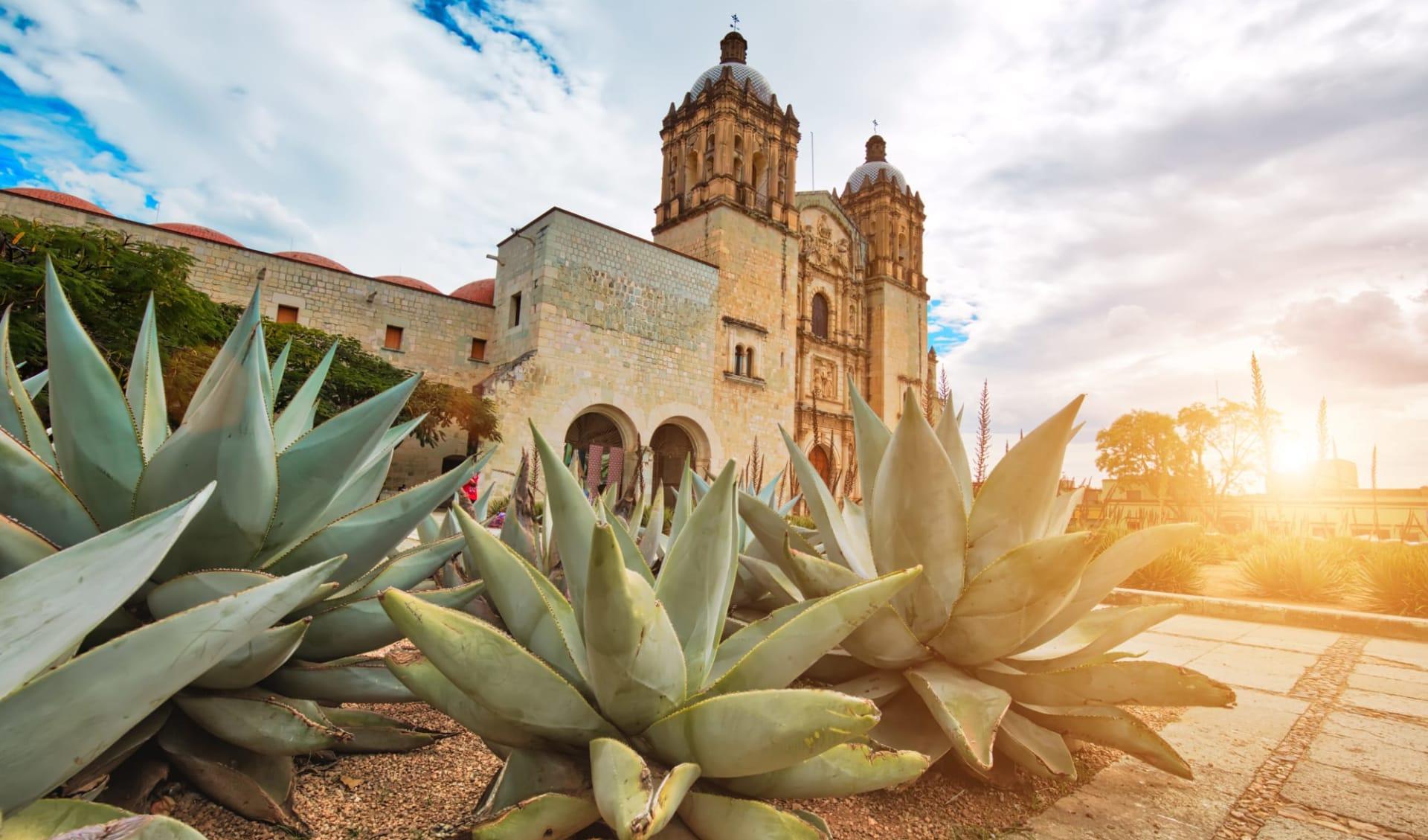 Hostal de La Noria in Oaxaca: shutterstock_1271193082_Oaxaca1