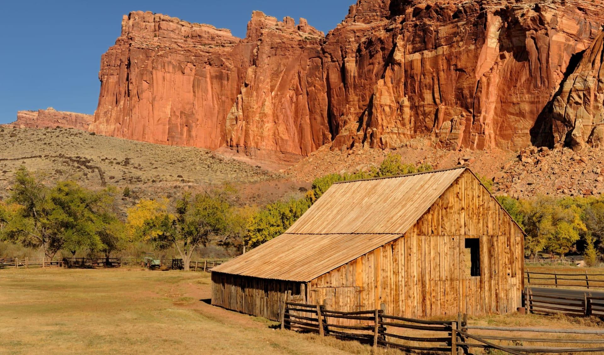 Nationalparks Explorer Extended ab Las Vegas: shutterstock_88636306_Barn Capitol Reef NP