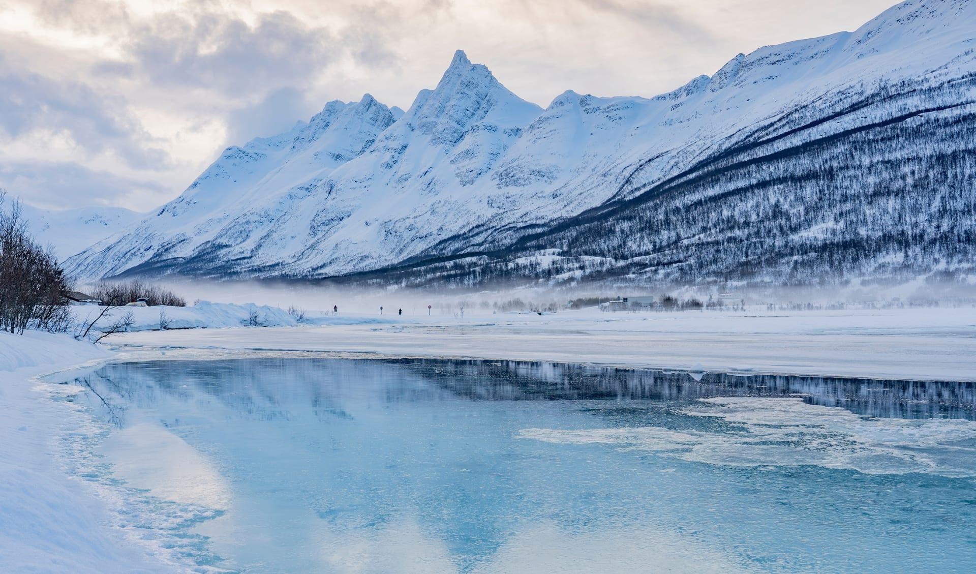 Polarkreis, Arktis