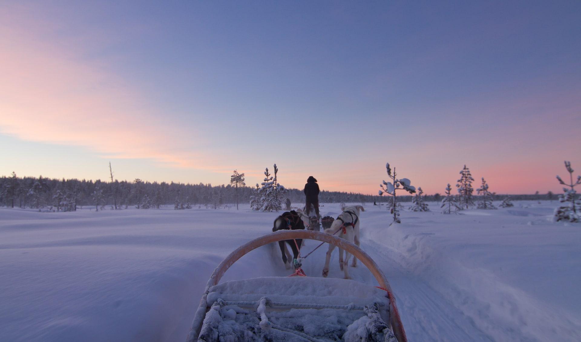 Hundeschlitten, Norwegen