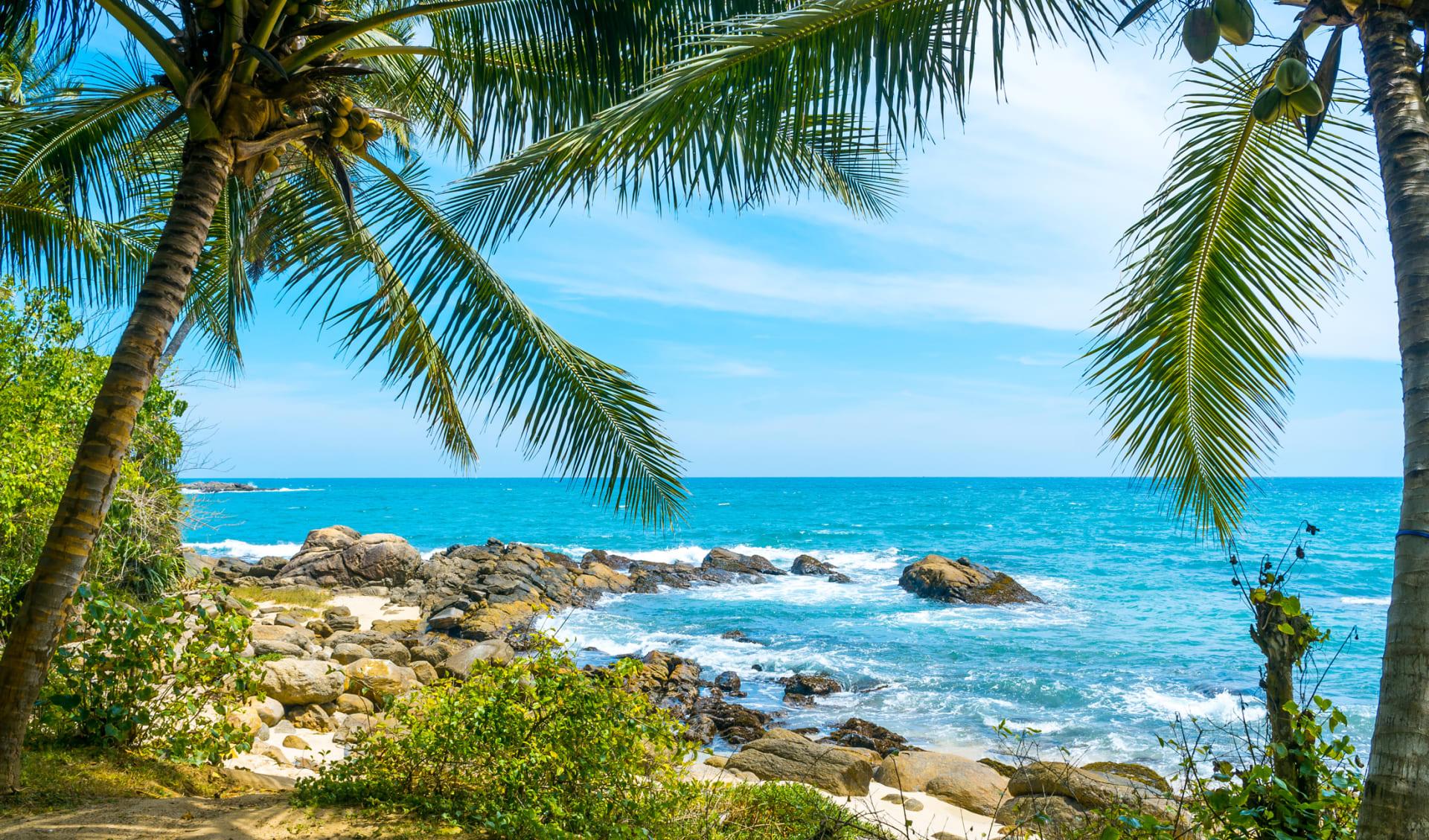 Tropischer Strand, Sri Lanka