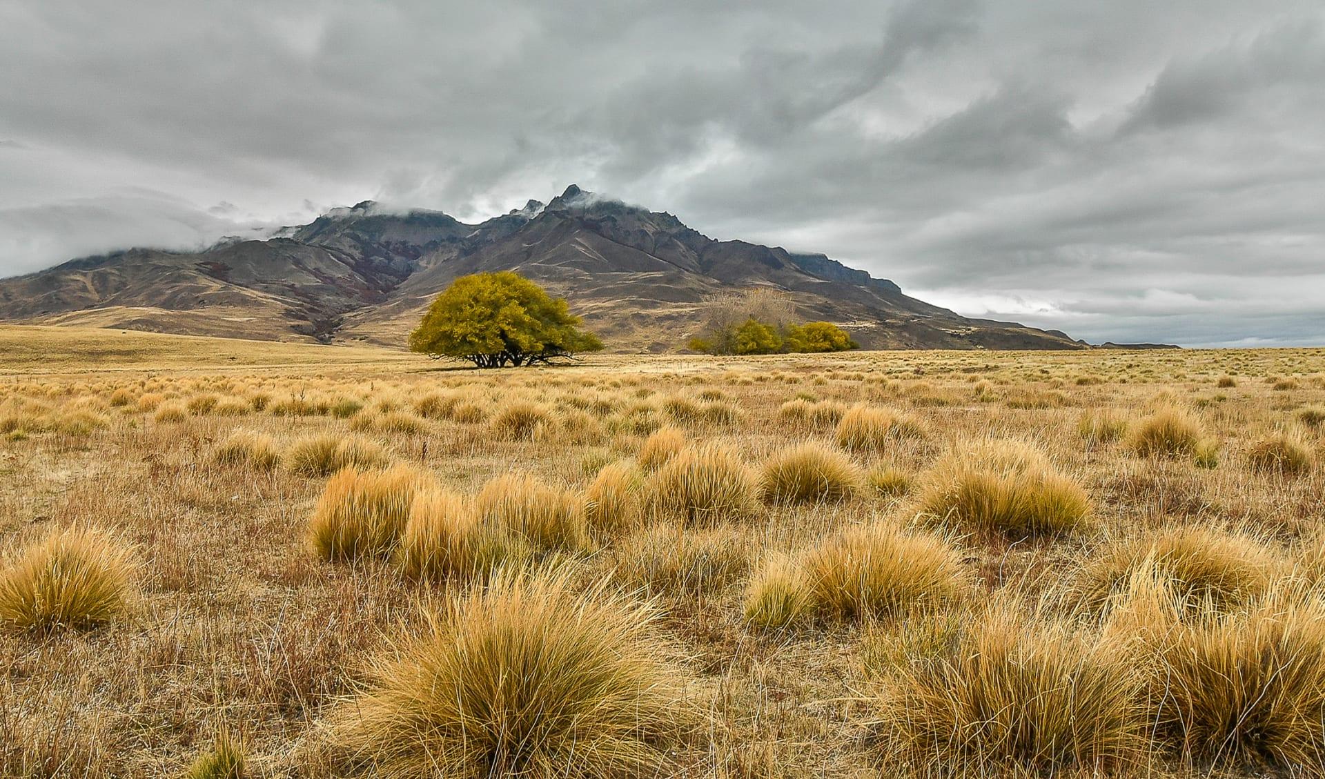 Pampa, Argentinien