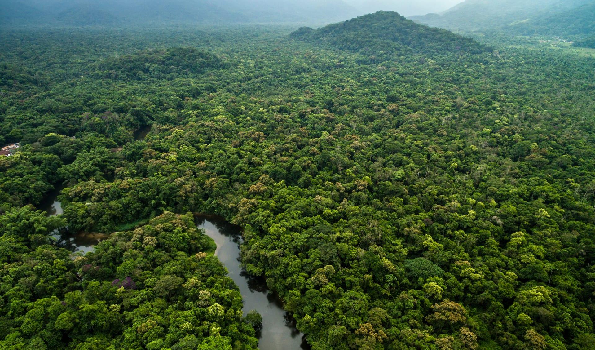 Amazonas, Dschungel und Fluss, Peru