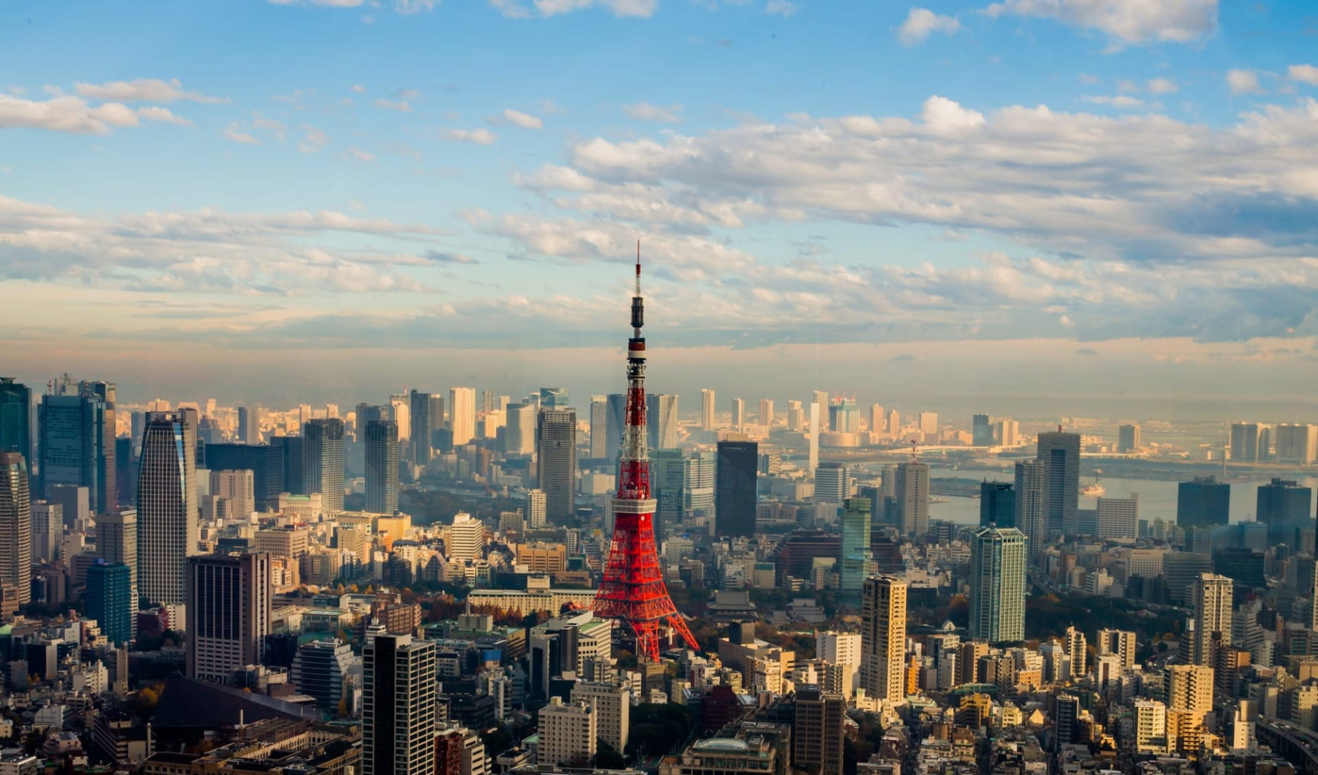 Kontrastreiches Japan ab Tokio: Tokyo: City view with Tower