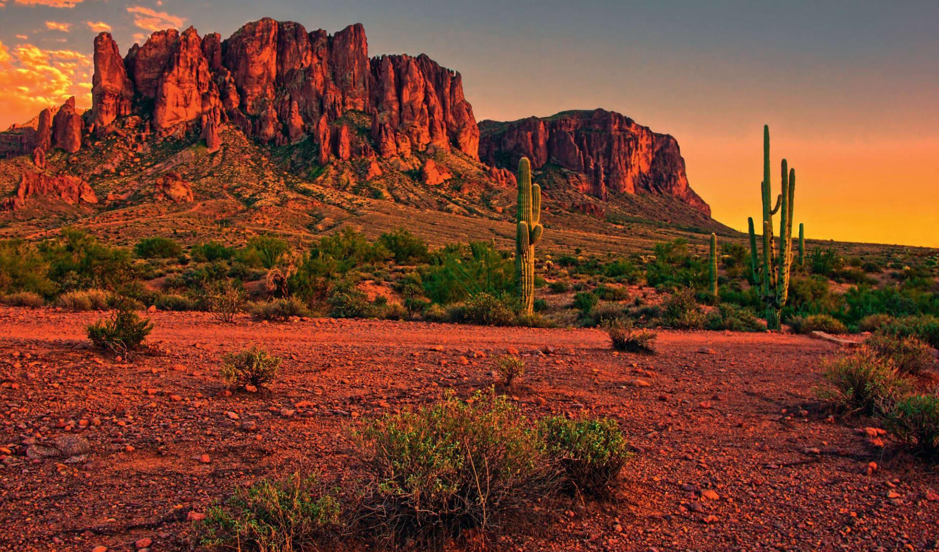Spirit of the Southwest ab Phoenix: USA - Arizona - Desert Sunset near Phoenix