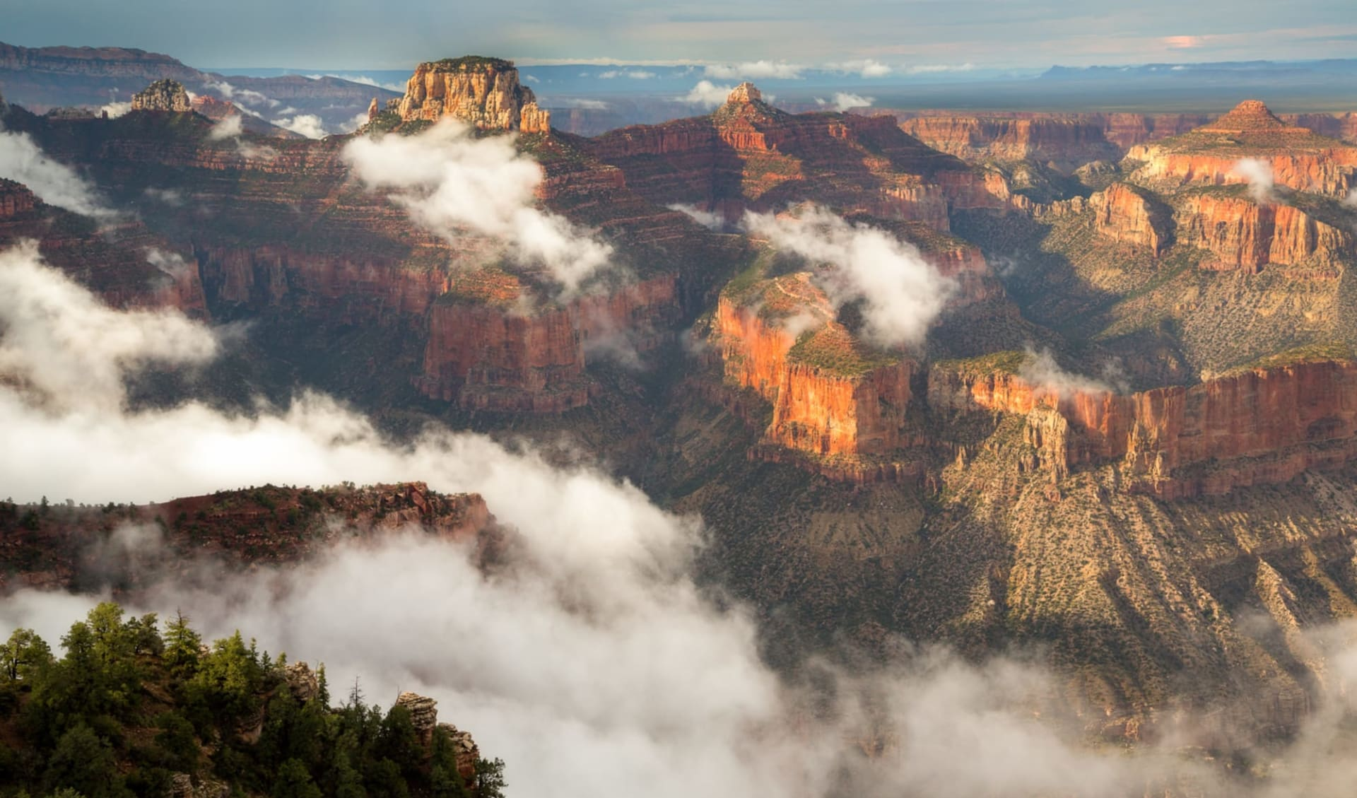 West Coast Insider ab San Francisco: USA - Arizona - Grand Canyon North Rim