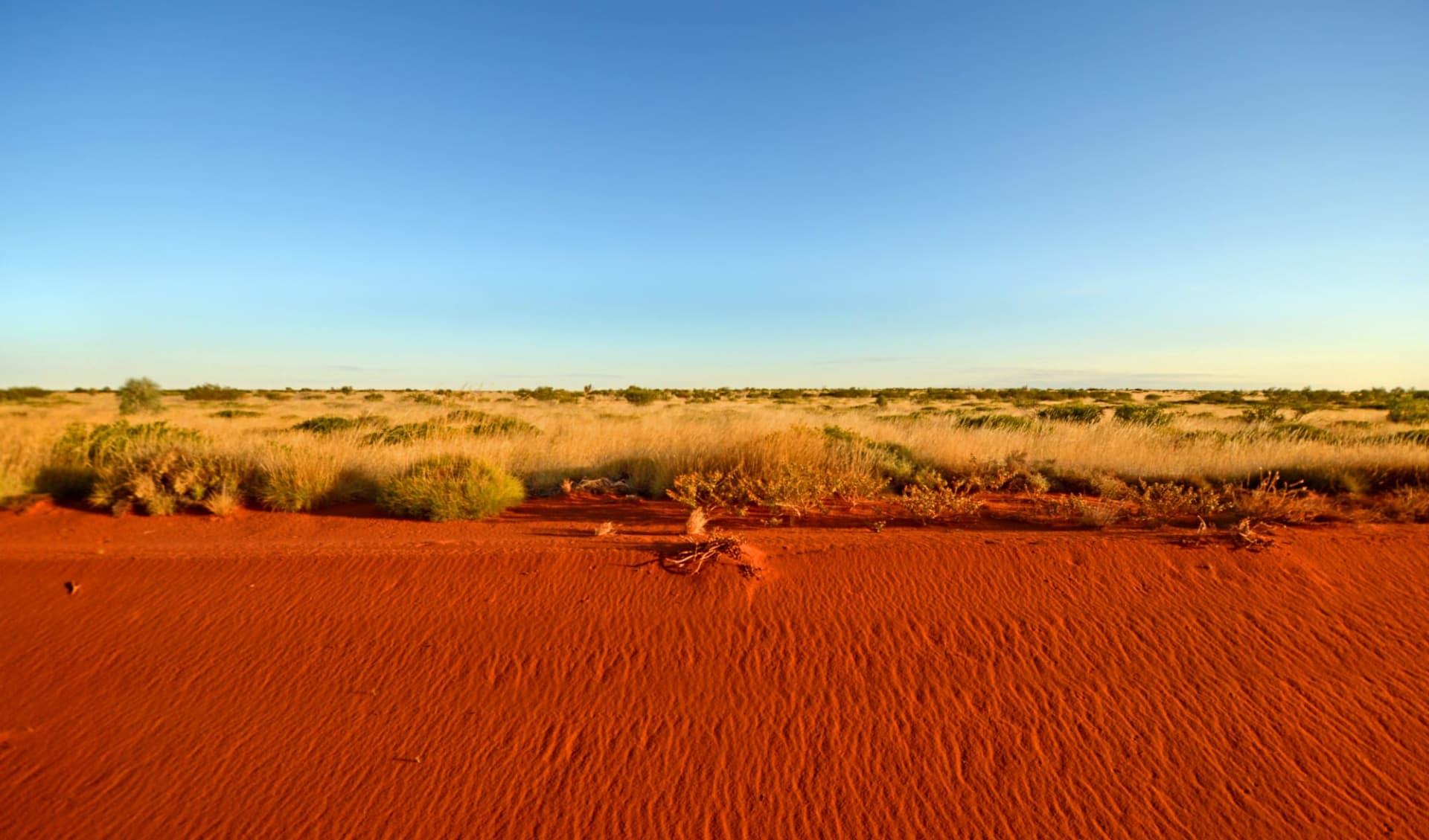 Canning Stock Route ab Perth: Wüstenstraße und blauer Himmel