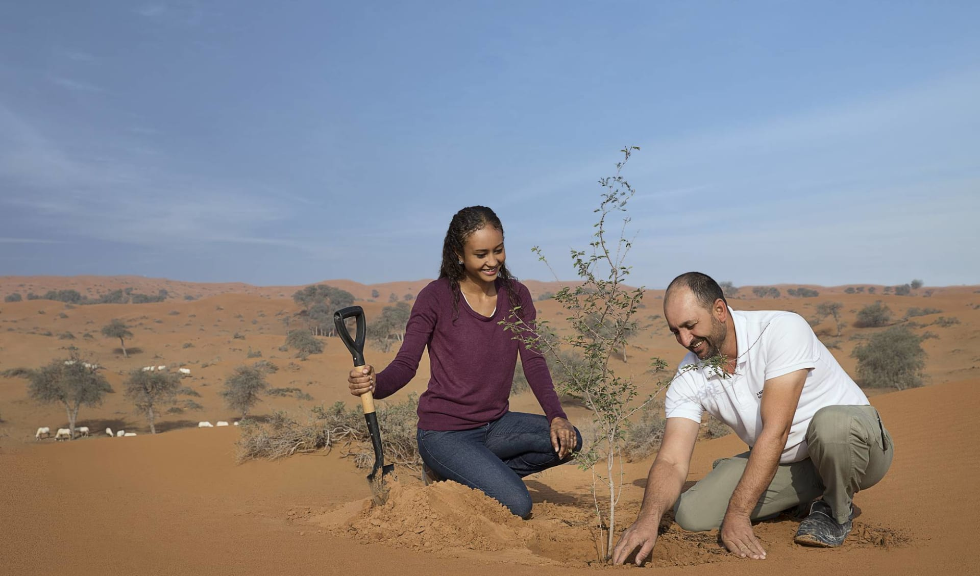 The Ritz-Carlton Ras Al Khaimah, Al Wadi Desert in Ras al Khaimah:
