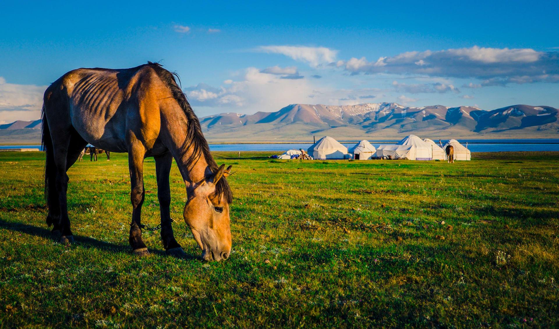 Song Kul See, Kirgistan