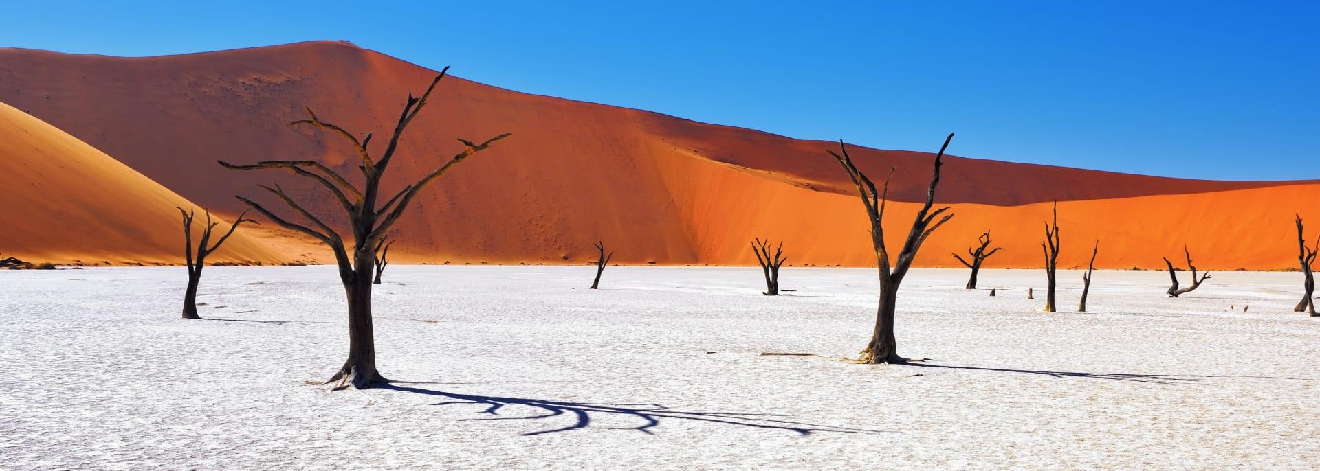 Deadlei, Sossusvlei, Namibia
