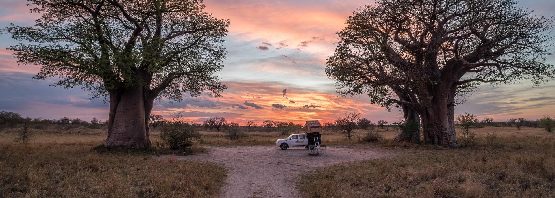 Baines Baobabs, Südafrika