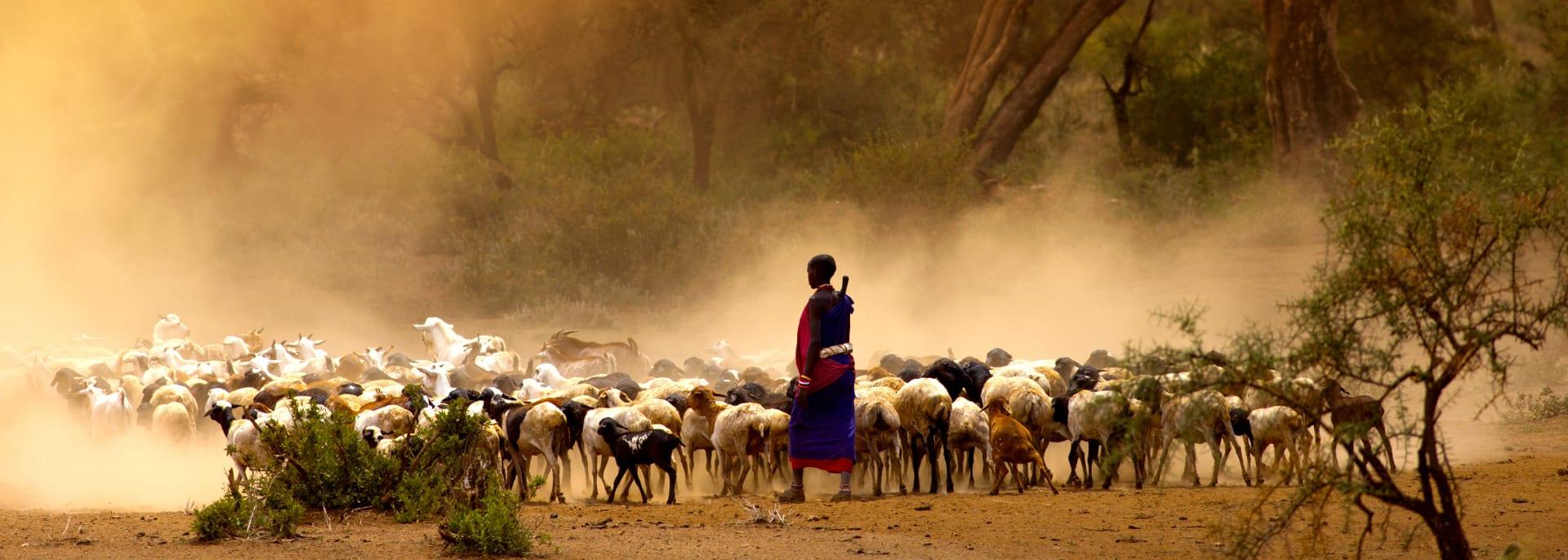 Masai, Tansania/Sansibar