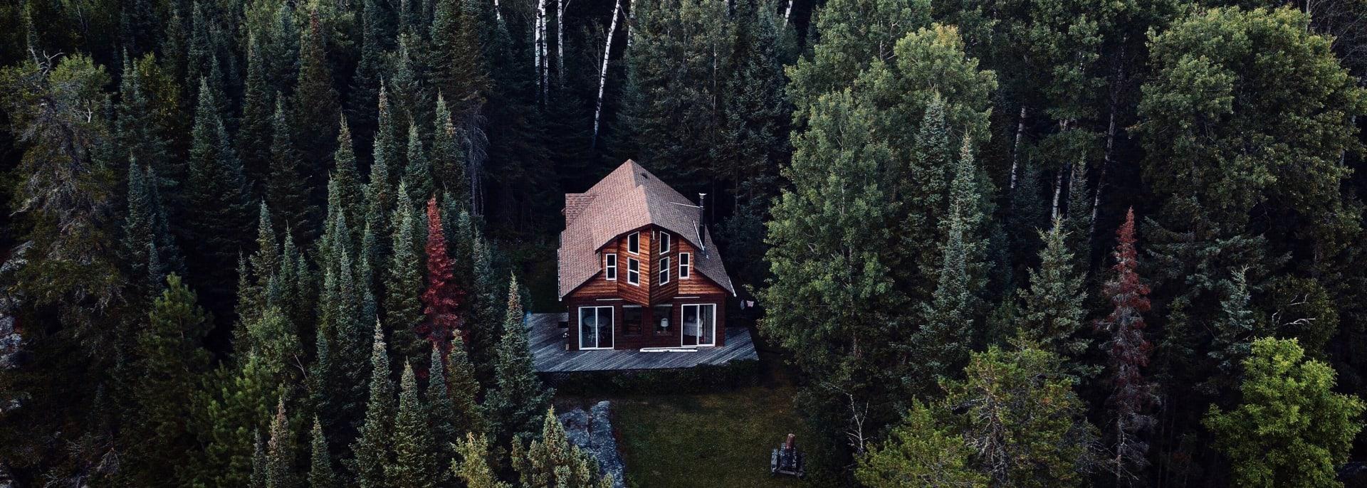 Luxuriöse Waldhütte, Alaska