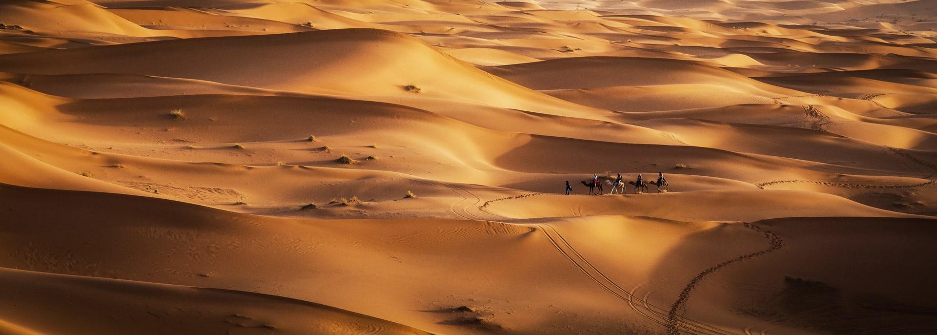 Gruppenreisen mit Kamelen, Oman