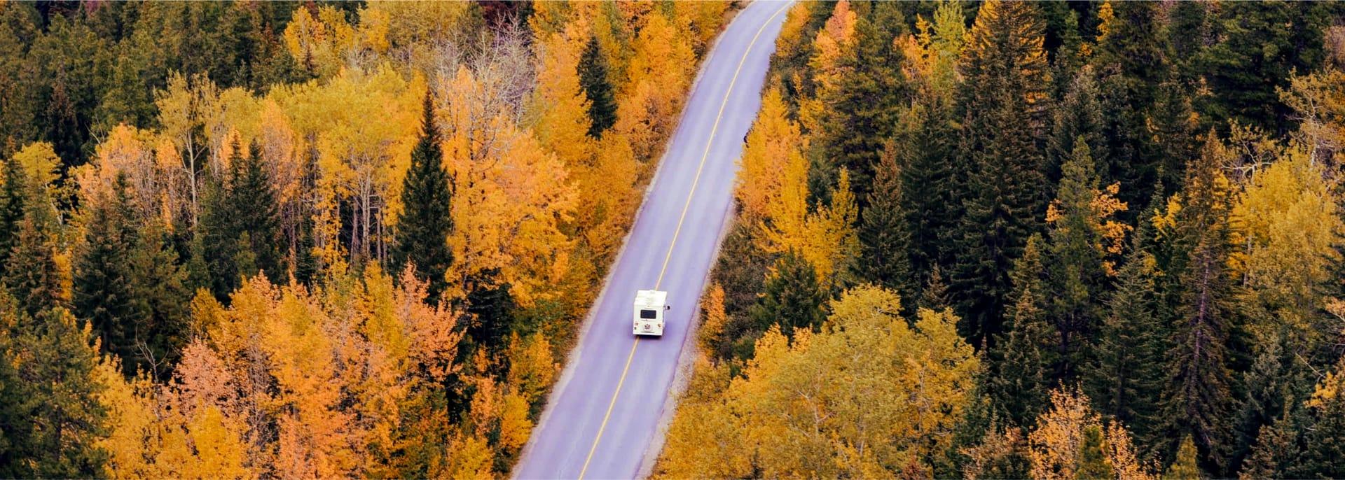 Bird's-eye view of an autumn road