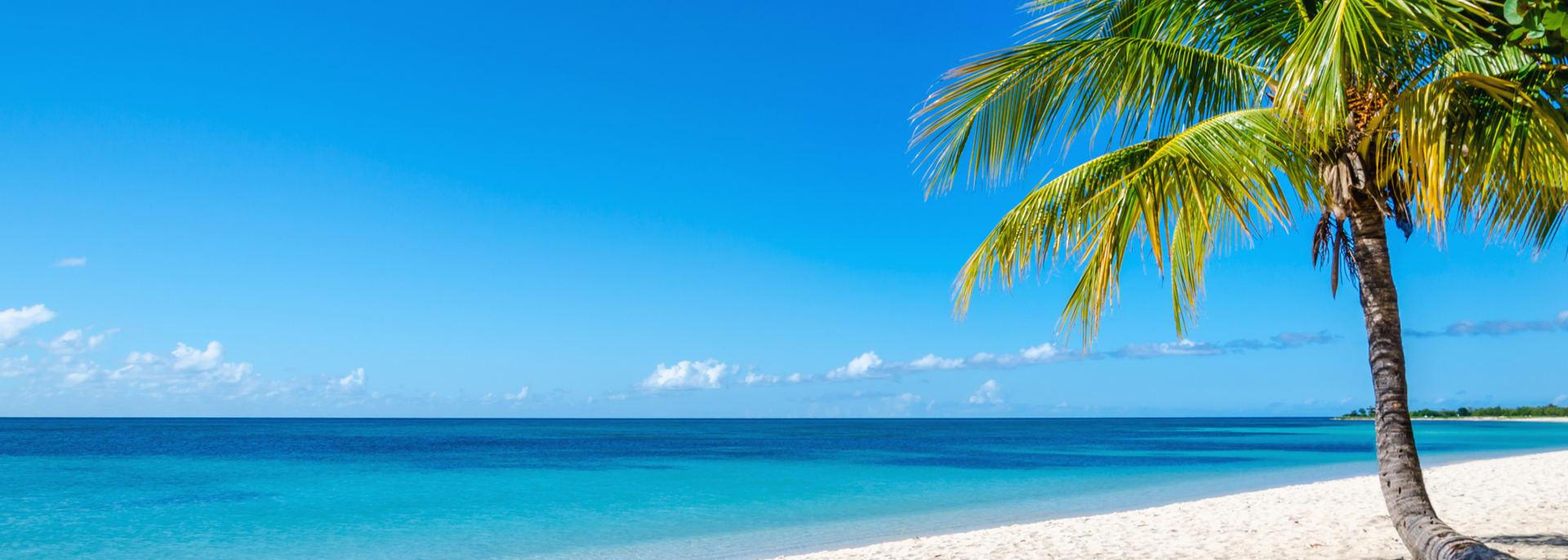 Exotischer Sandstrand mit schönen Palmen, Kuba, Karibische Inseln, Zentralamerika