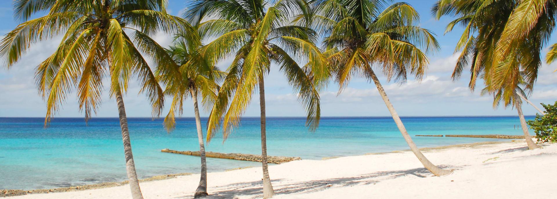 Tropical beach with white sand, palm-trees and blue ocean on Maria la Gorda, Cuba